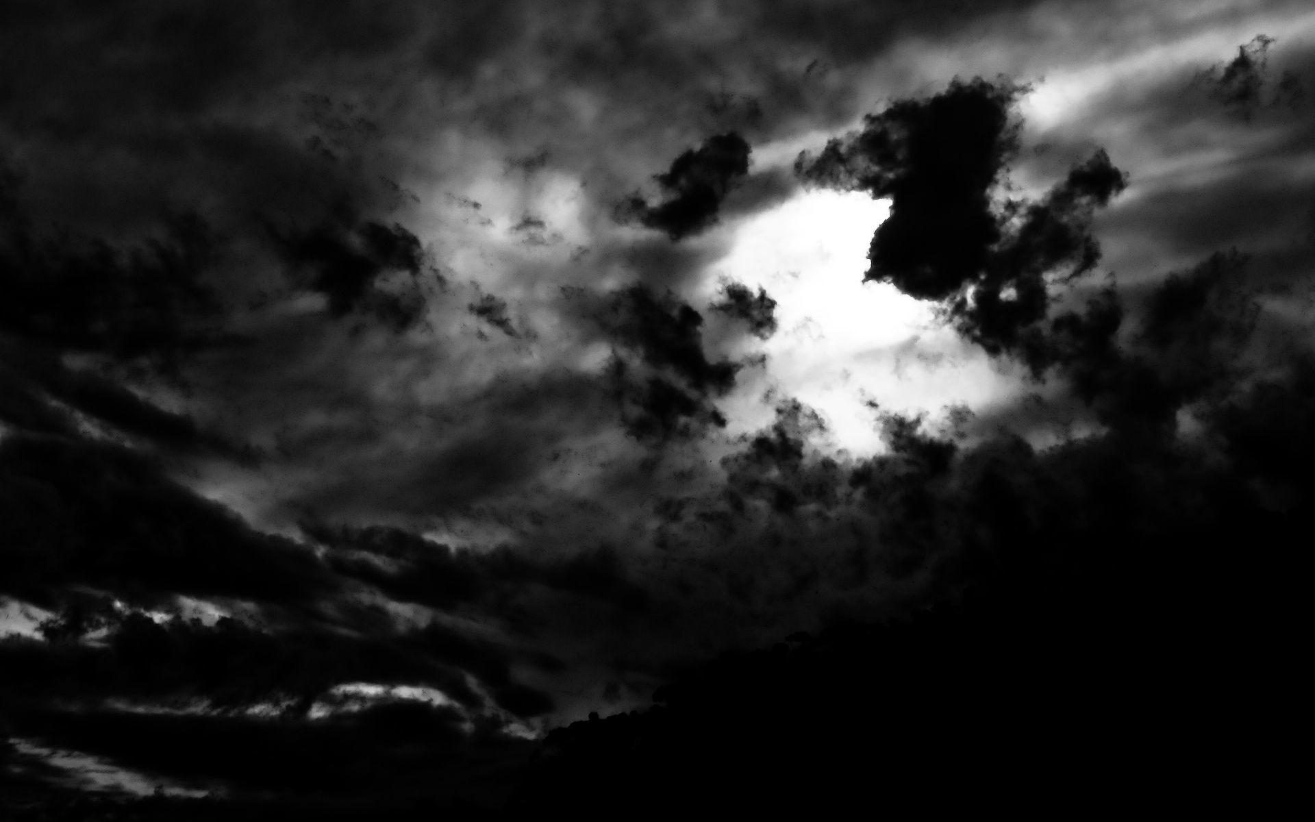 1920x1200 Dark Woods Wallpaper