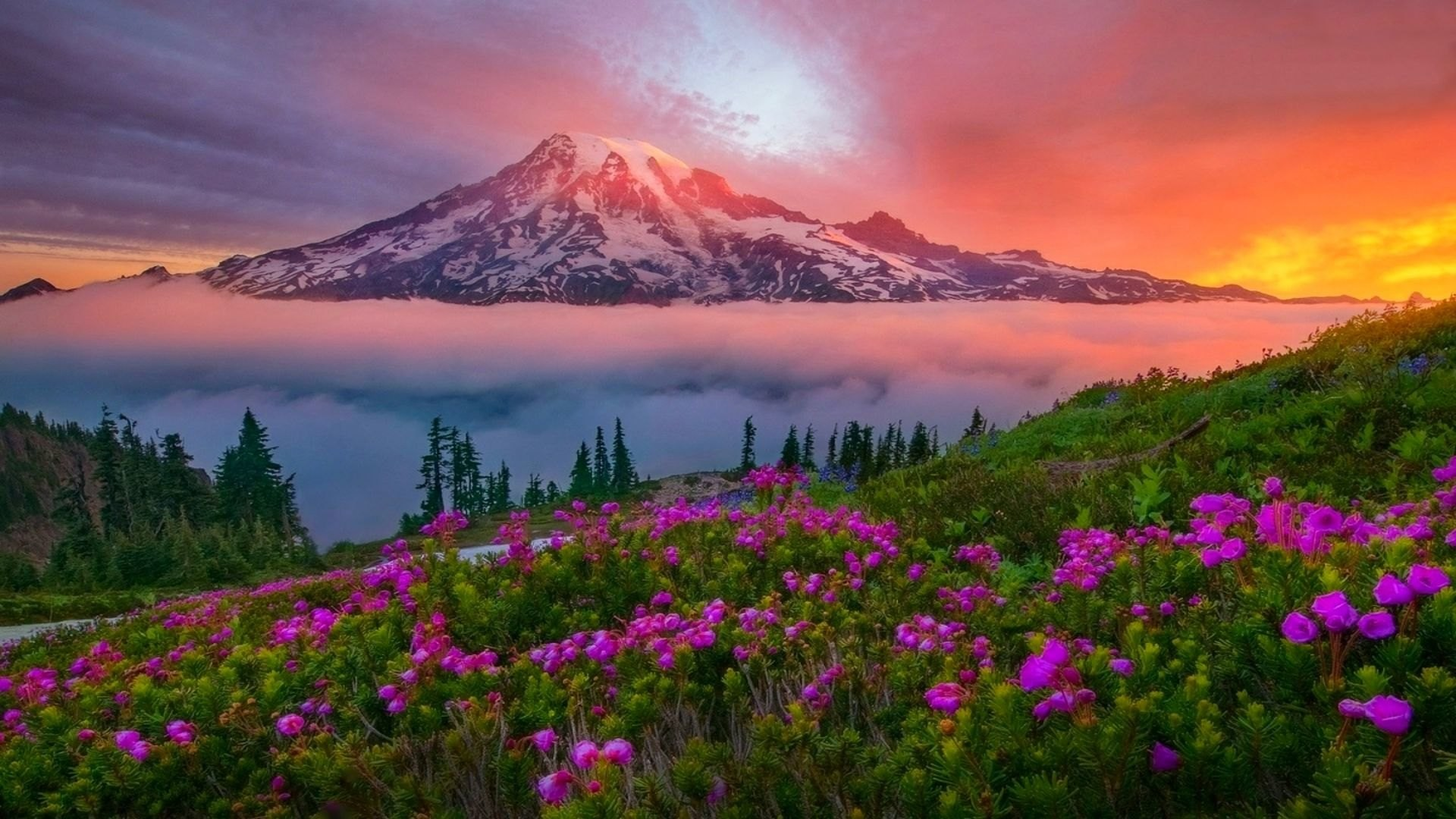 1920x1080 Mount Rainier Wallpaper HD 11 - 1920 X 1080