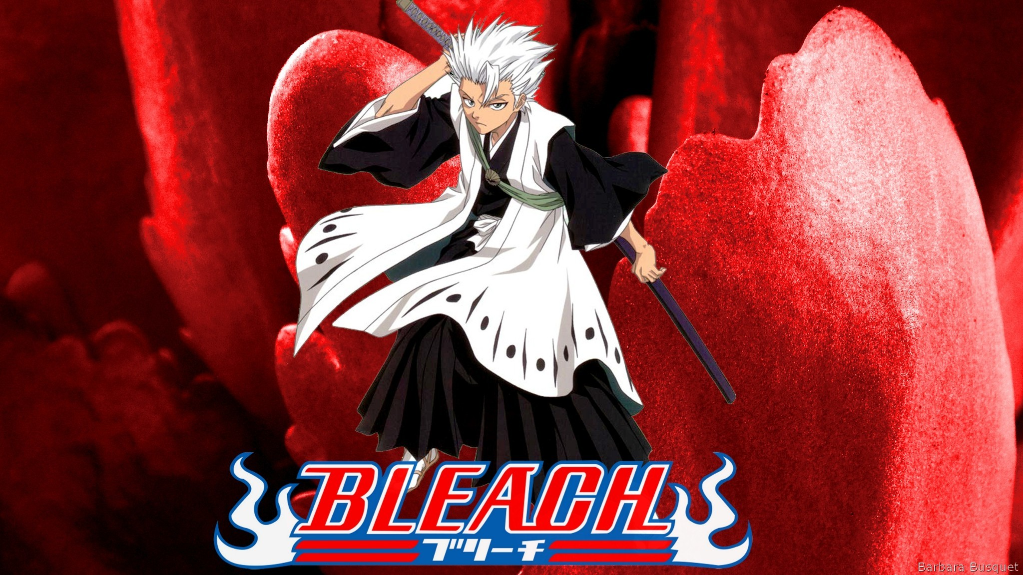 2048x1152 Bleach wallpaper with Toshiro Hitsugaya
