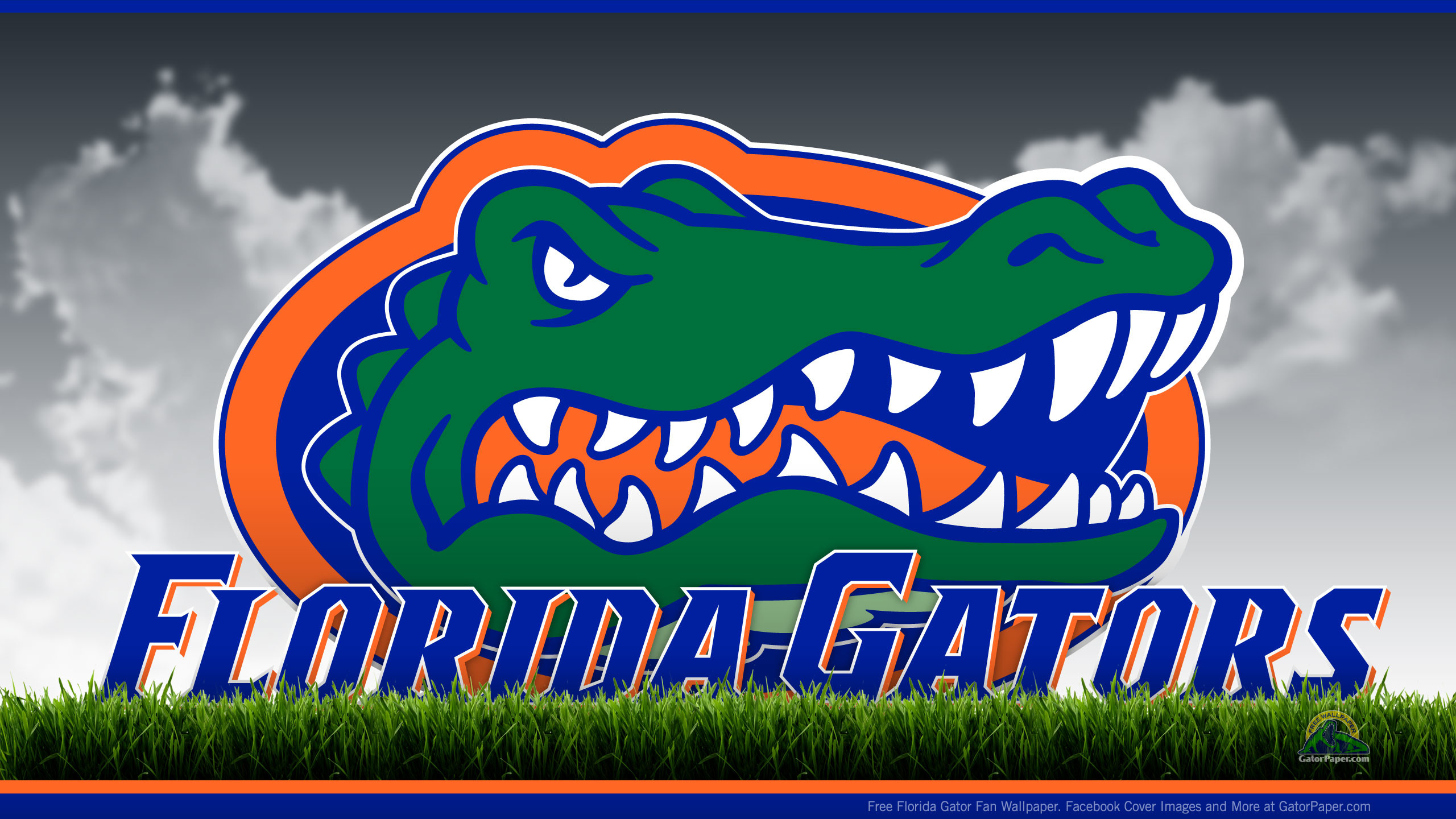 2560x1440 Florida Gators - Field View | GatorPaper - Free Sports Desktop .