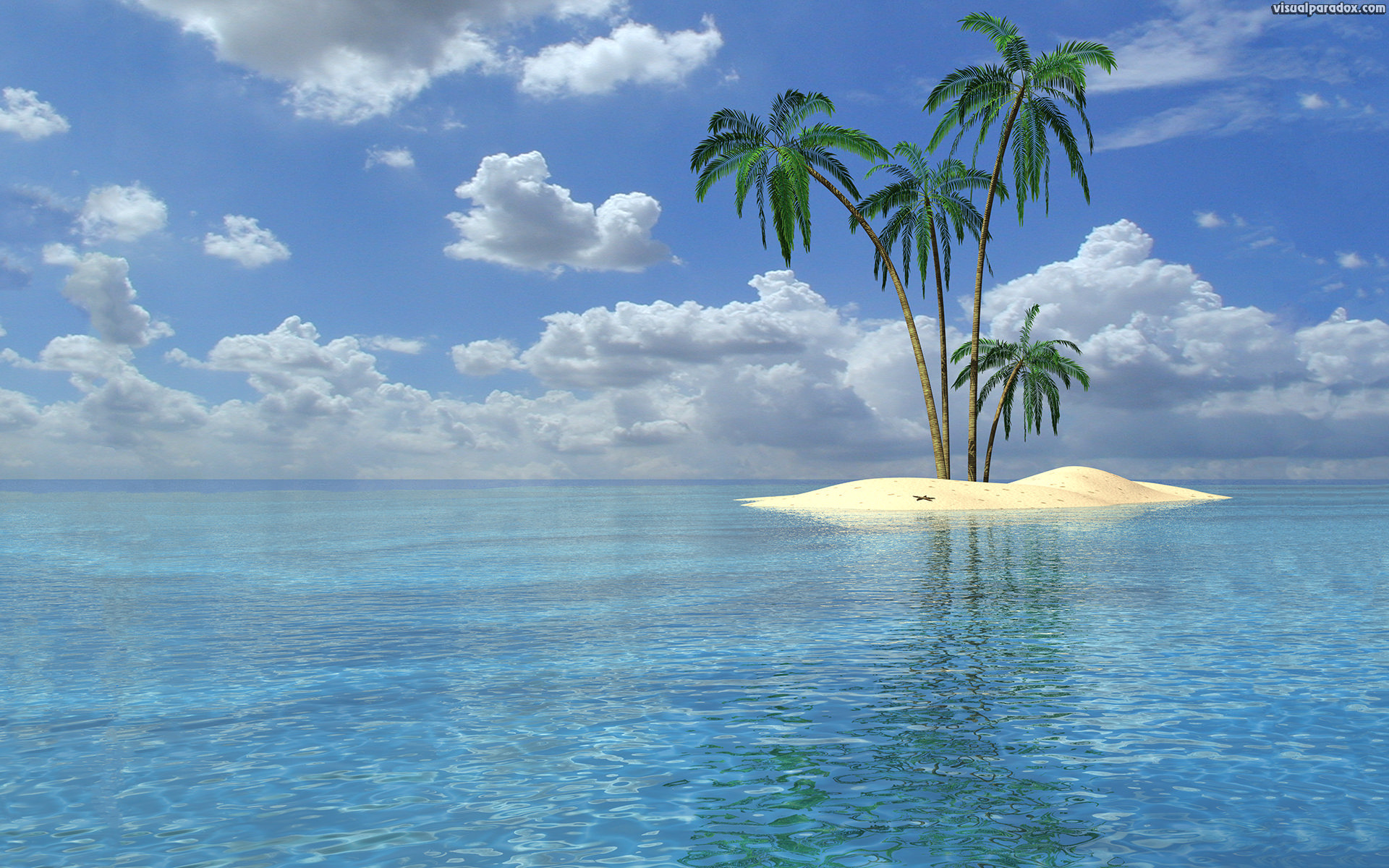 Palm Tree Beach Wallpaper 53 Images