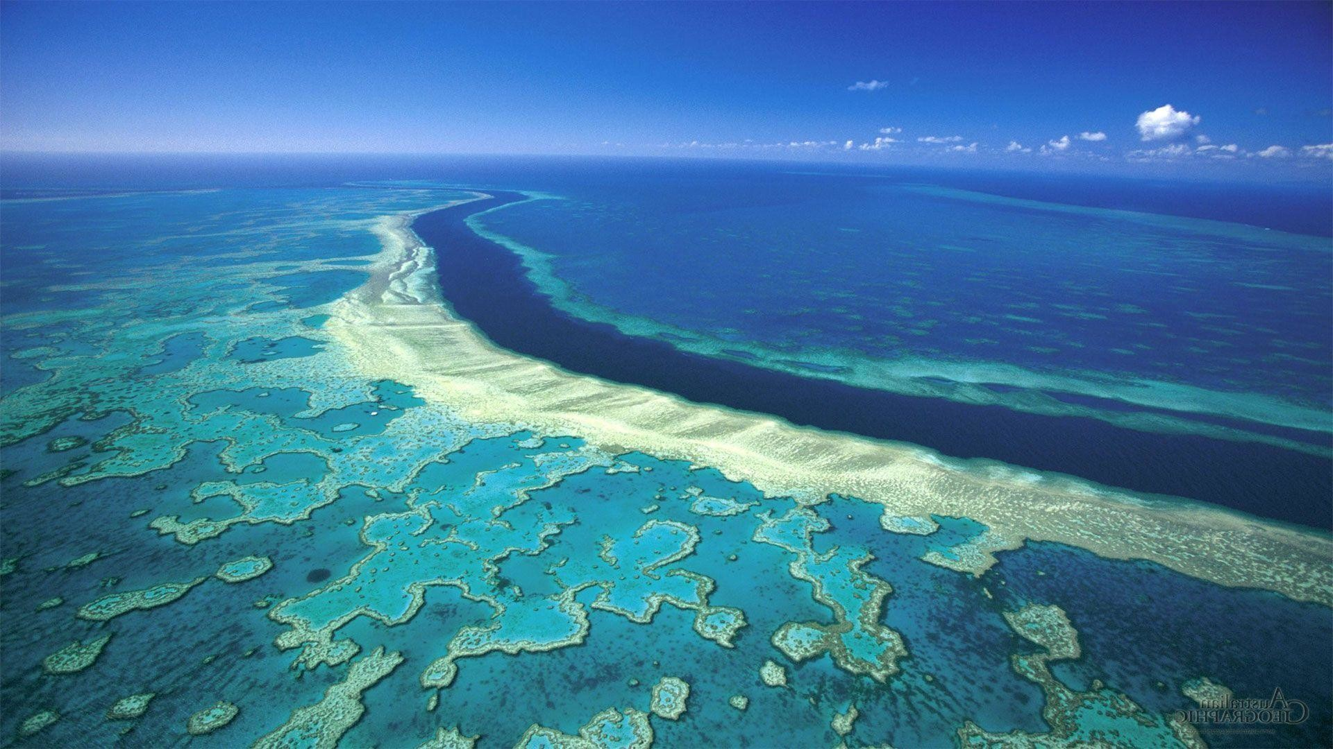 1920x1080 Great Barrier Reef Wallpapers iphone | Pinter Wallpapers
