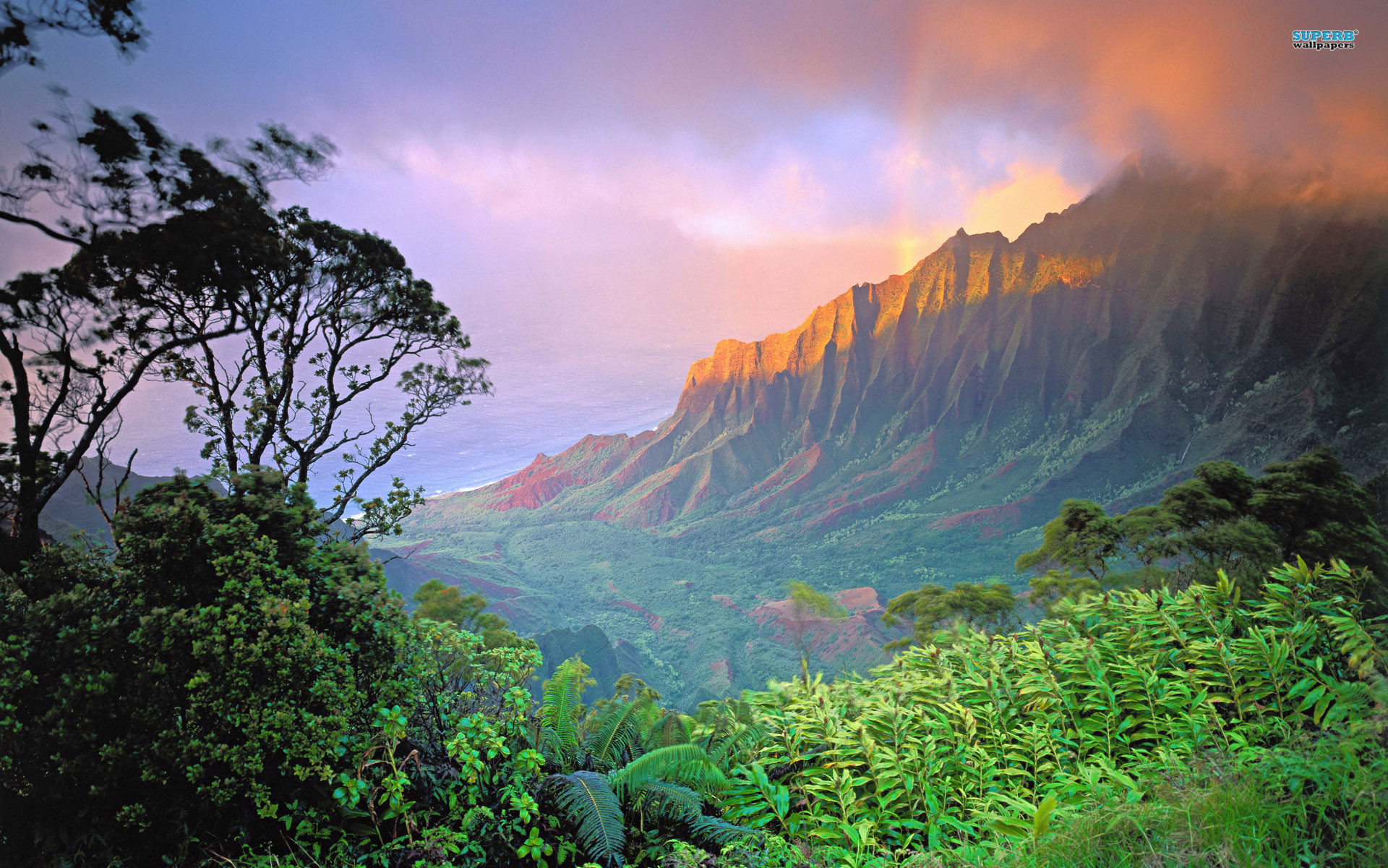 1920x1200 HD Images Collection of Hawaii: 3507276 by Celina Feemster