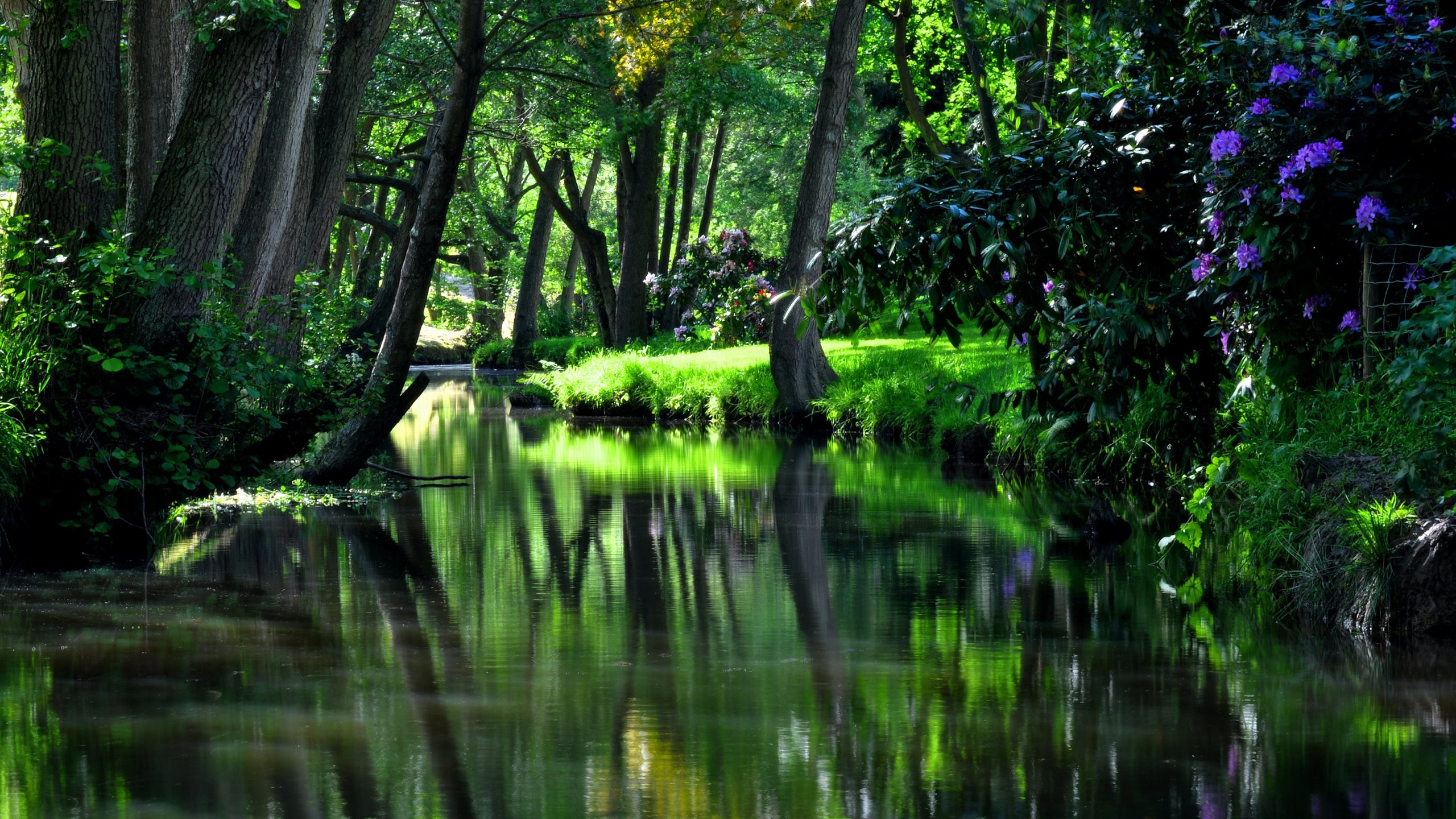 2560x1440 20 Fondos de Pantalla de Paisajes Naturales en HD. Calvin And HobbesDesktop  WallpapersThe RiverReal LifeSummer ...
