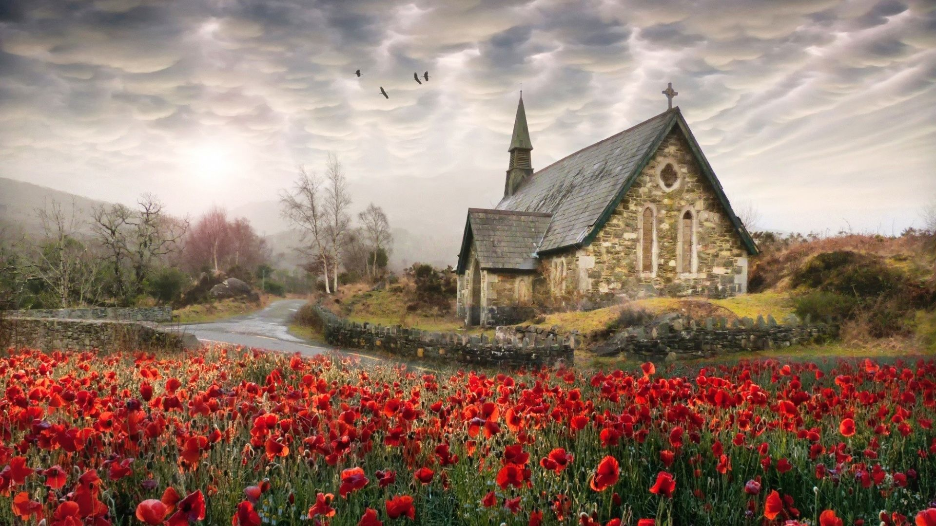1920x1080 Ireland Tag - Road Field Church Country Ireland Clouds Poppies Blossoms  Amazing Flower Desktop Wallpapers for