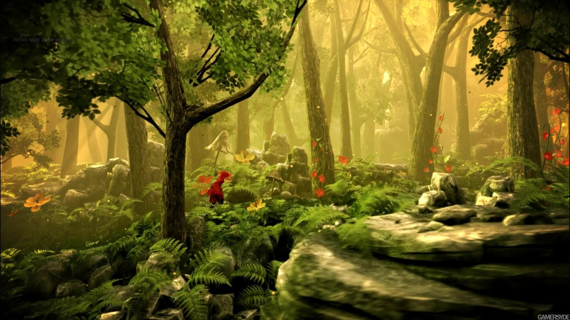 1920x1080 Fairytale Forest Full Photo | Wallpaper HD Collections