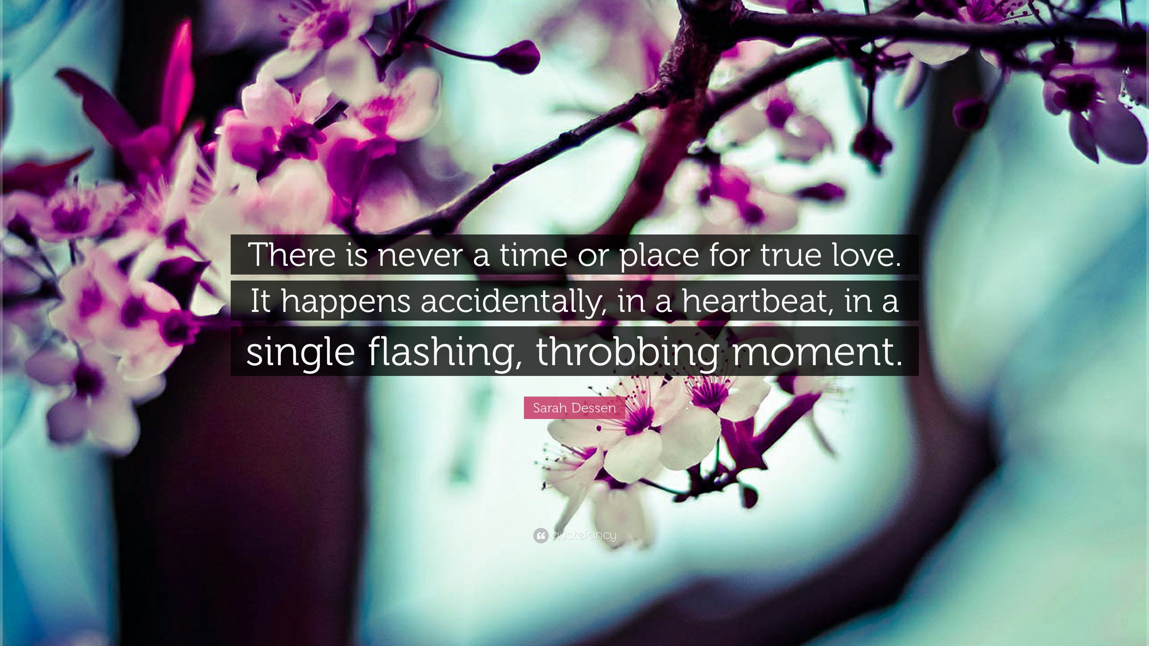"3840x2160 Sarah Dessen Quote: ""There is never a time or place for true love."