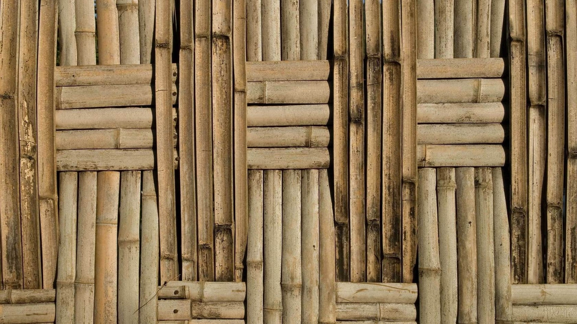 1920x1080 bamboo wallpaper hd for desktop