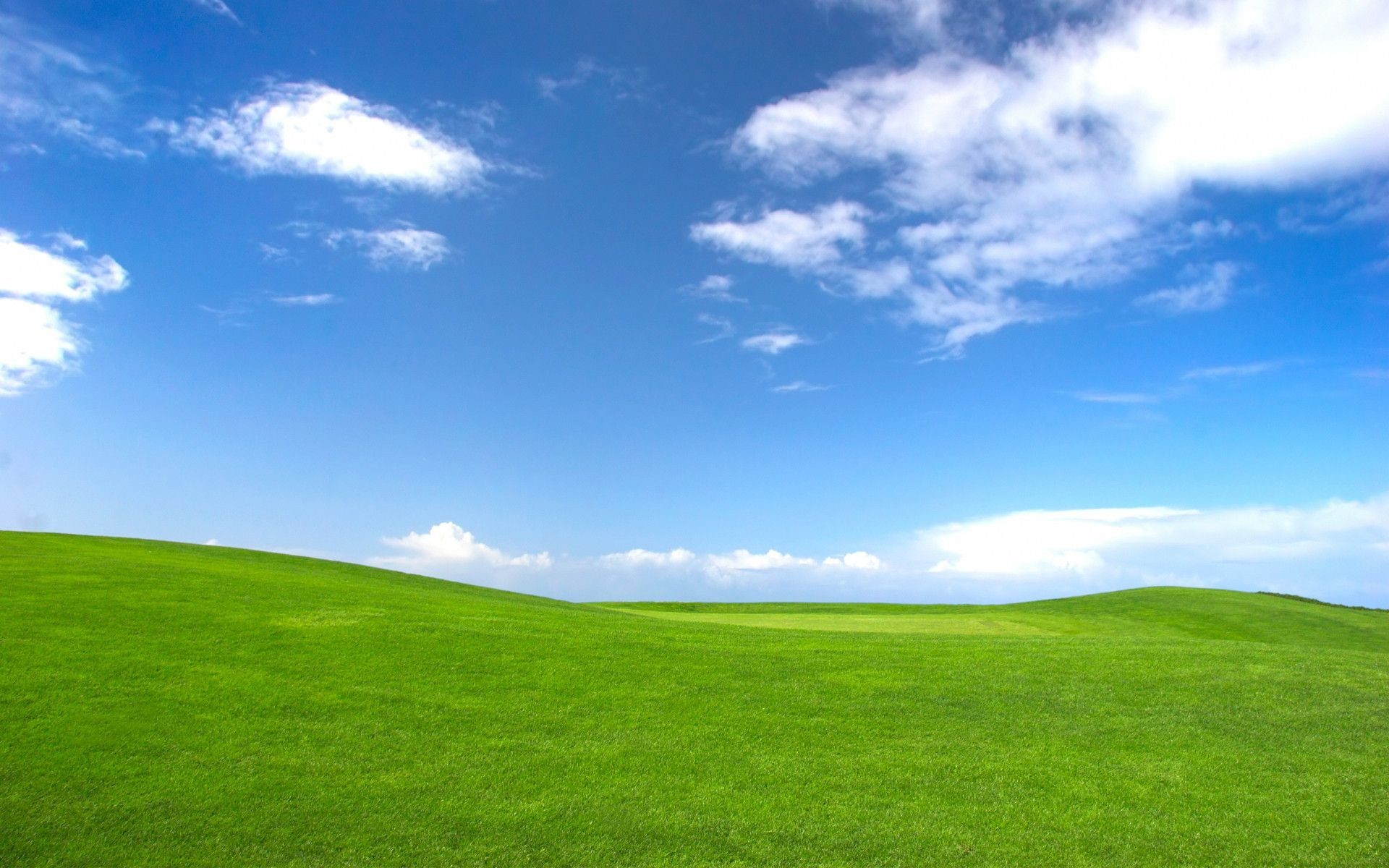 1920x1200 Windows XP Wallpapers Bliss Wallpaper