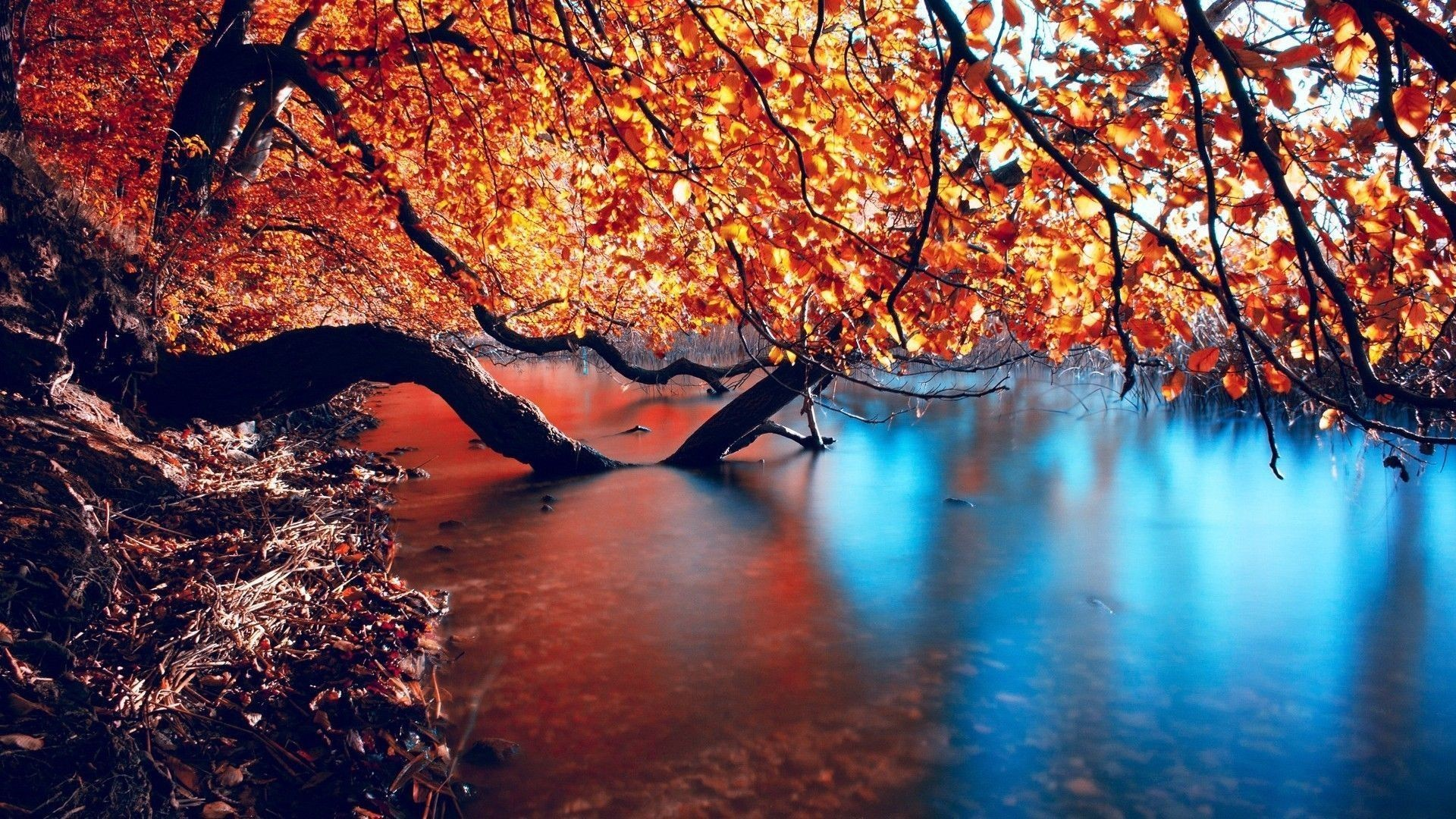 1920x1080  Autumn Lake | HD Wallpapers Pulse