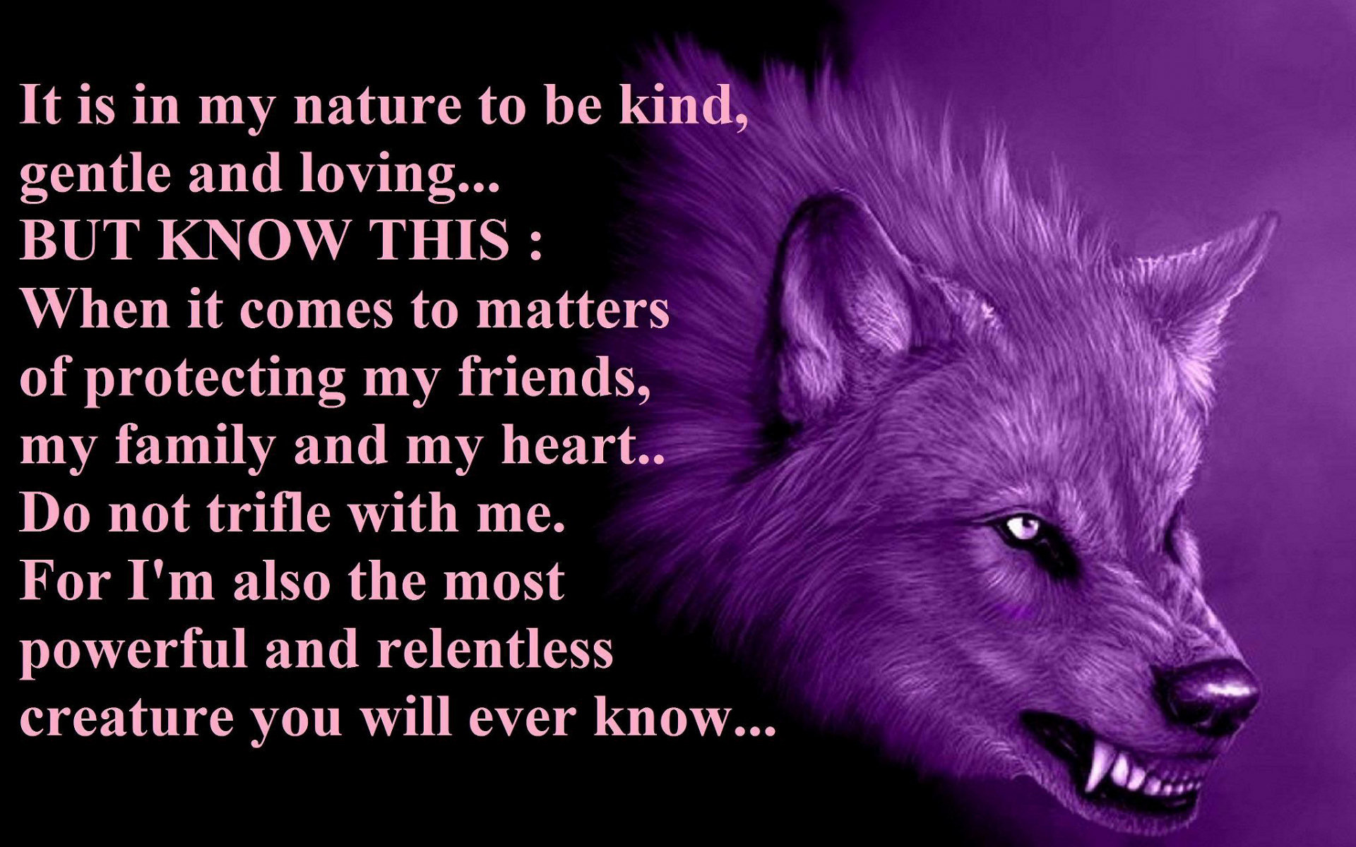 1920x1200 1000+ images about Animalz on Pinterest | Beautiful, Wolves and .