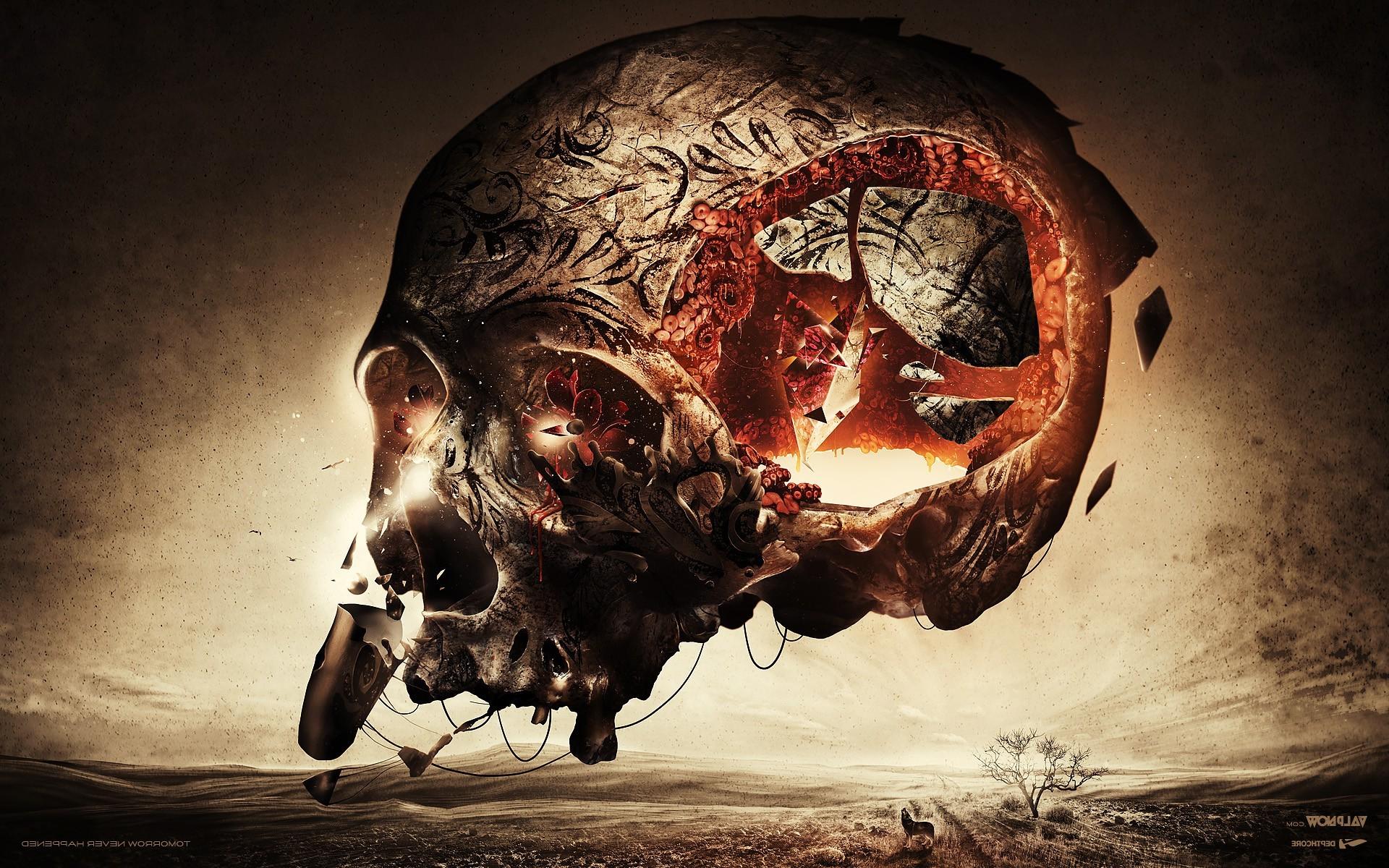 Abstract Skull Wallpaper 73 Images