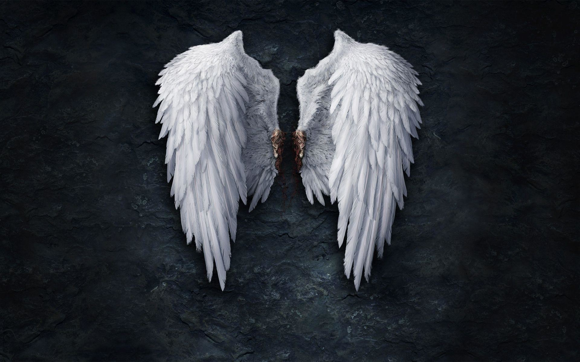1920x1200 Broken angel wings Wallpaper #