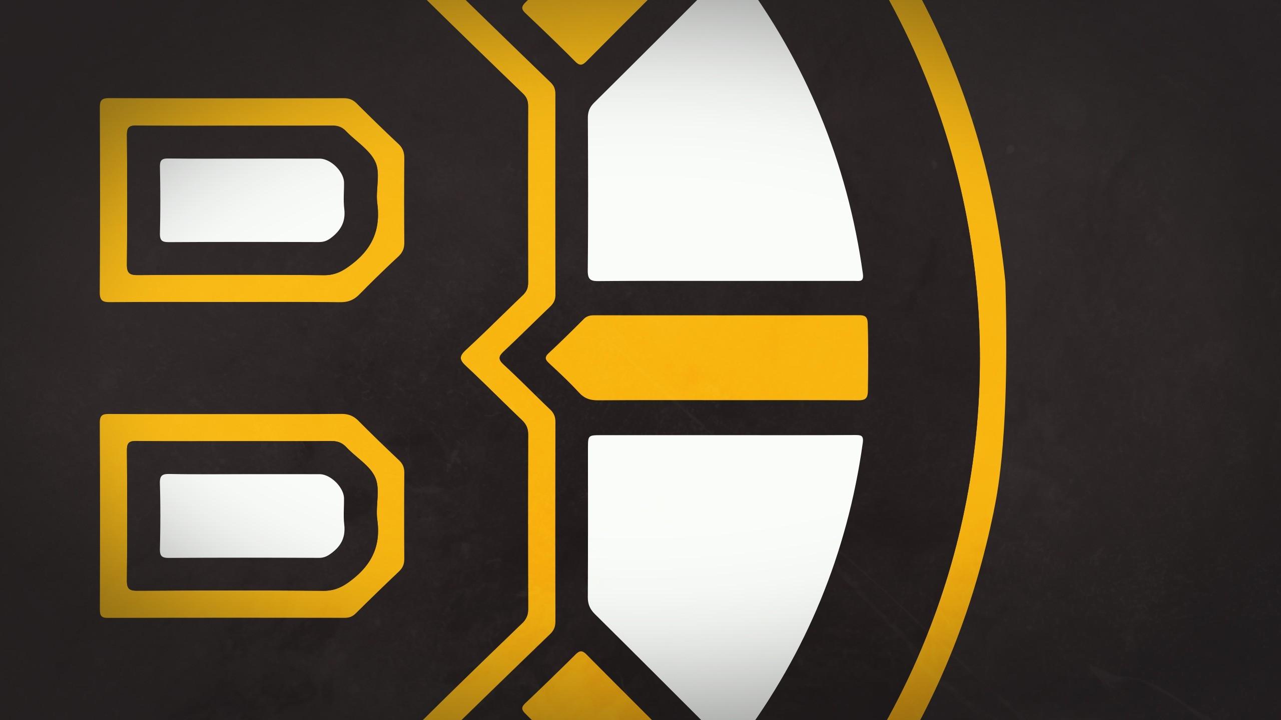 Boston Bruins Phone Wallpaper (65+ images)