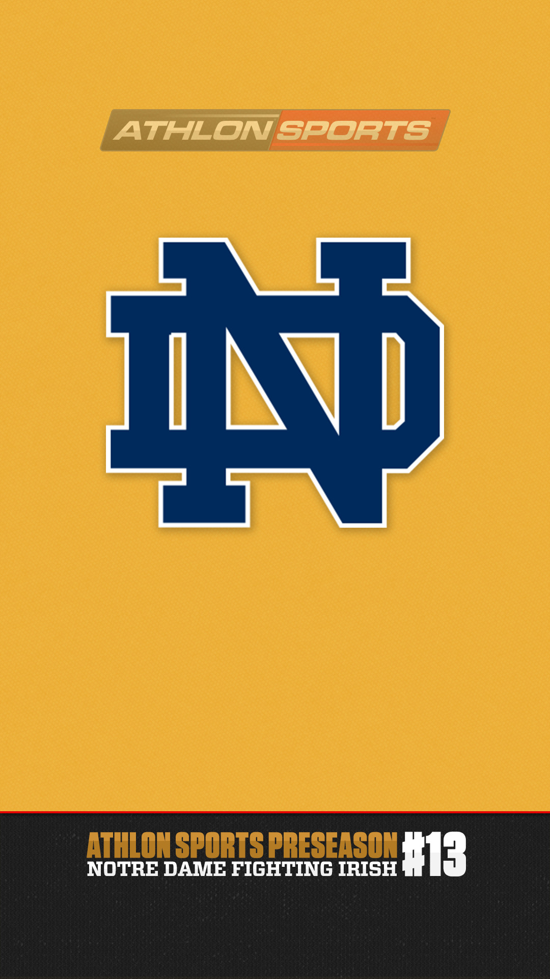 1080x1920 Notre Dame Phone Wallpapers Group (47+)