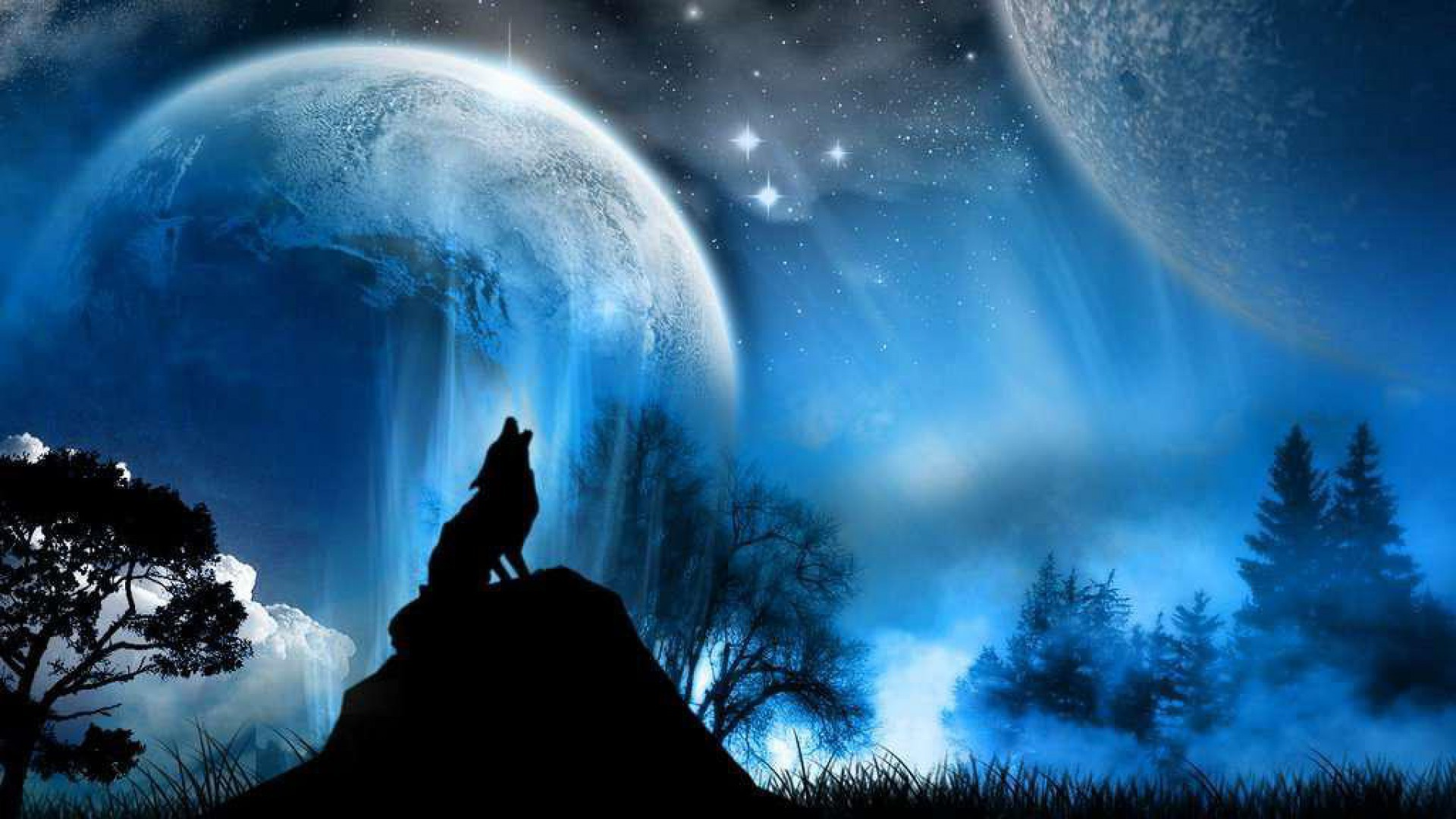 1920x1080 Collection of Cool Wolf Backgrounds on HDWallpapers