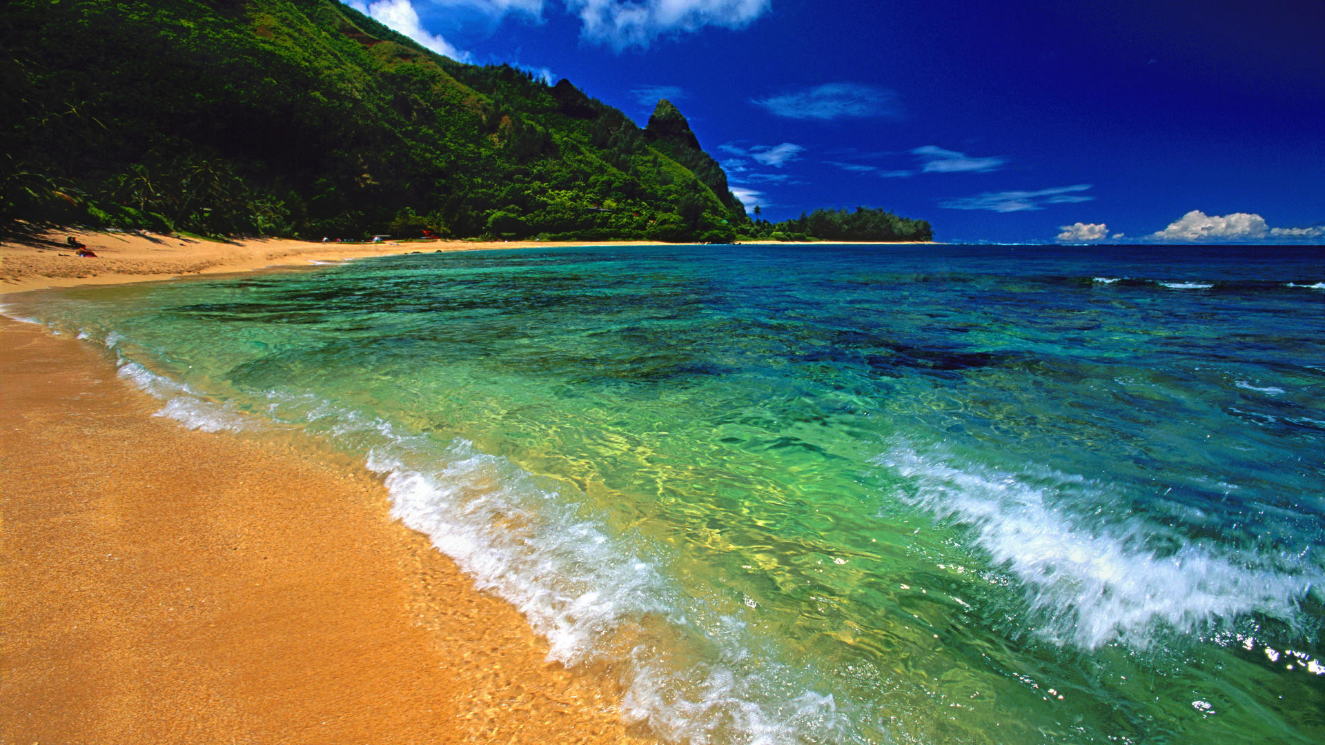 1920x1080 Free Desktop Wallpaper of Hawaii - WallpaperSafari Wallpaper Hawaii Beach -  WallpaperSafari Hawaiian Beach Wallpapers - Wallpaper Cave ...
