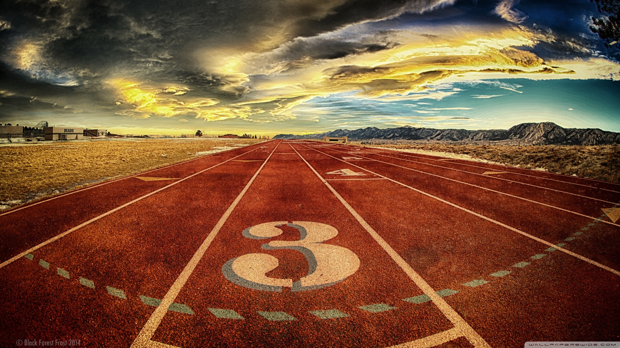 Track and field wallpapers