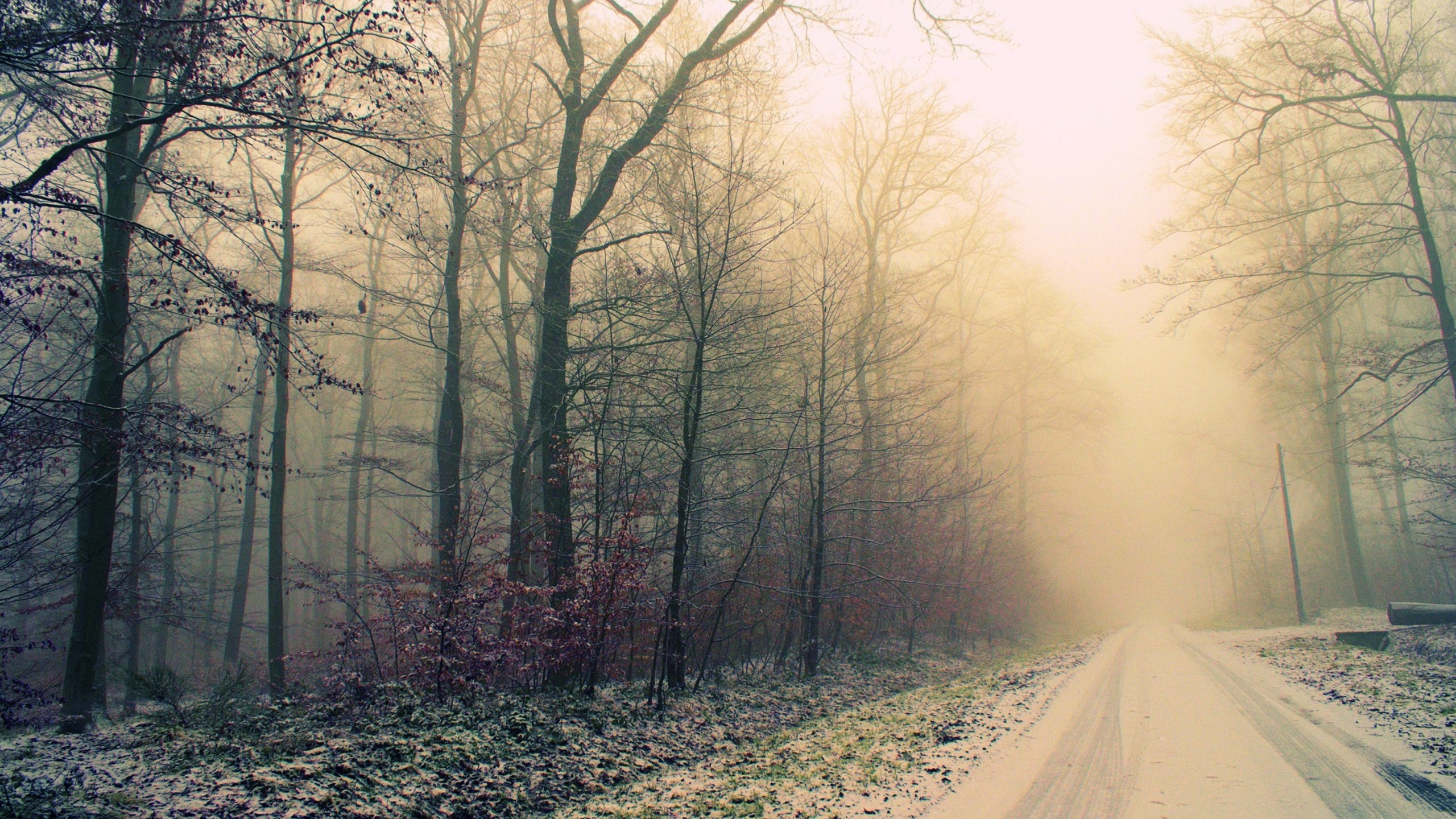 2560x1440 Cold Weather Wallpaper - WallpaperSafari ...