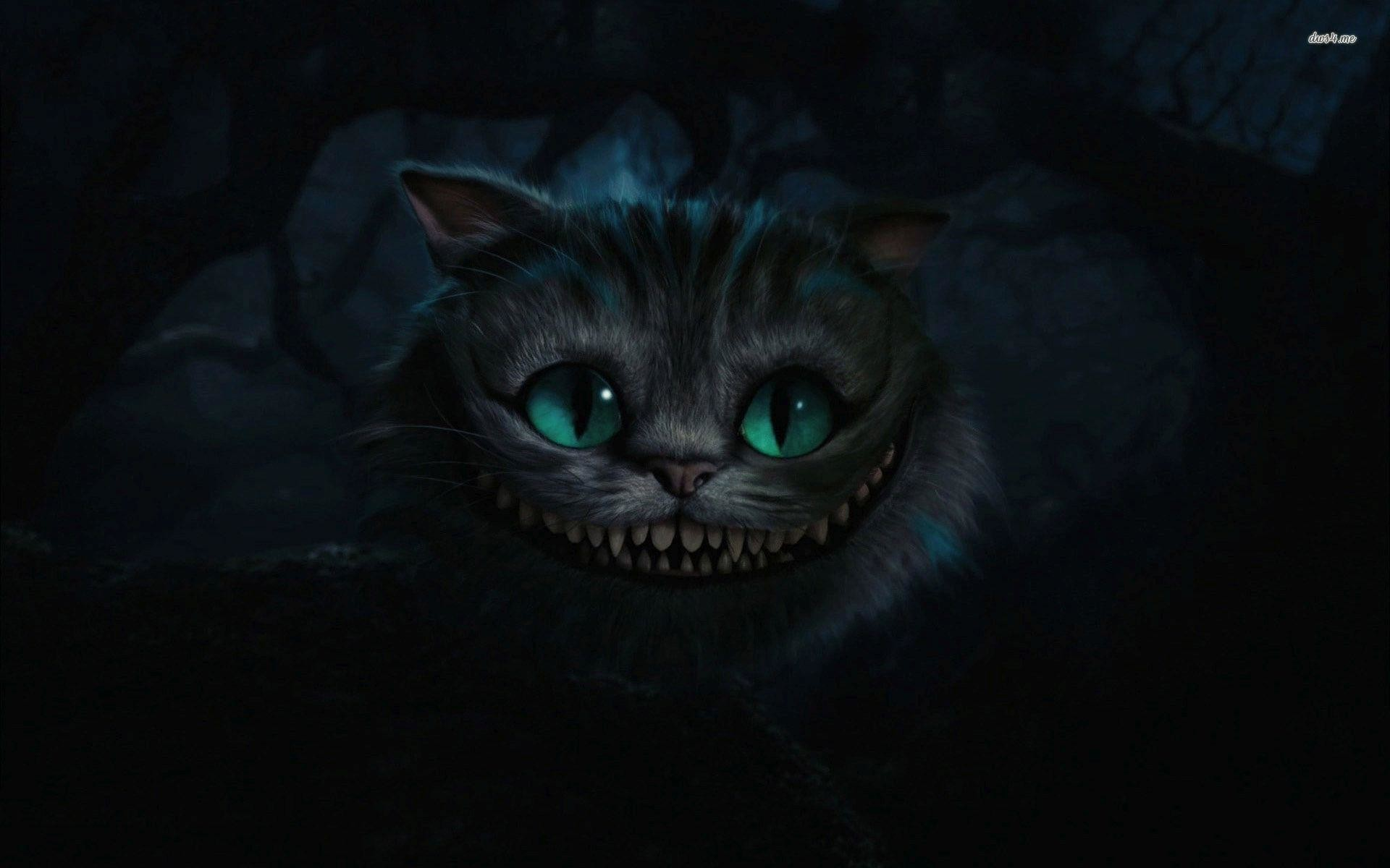 1920x1200 Most Downloaded Cheshire Cat Wallpapers - Full HD wallpaper search