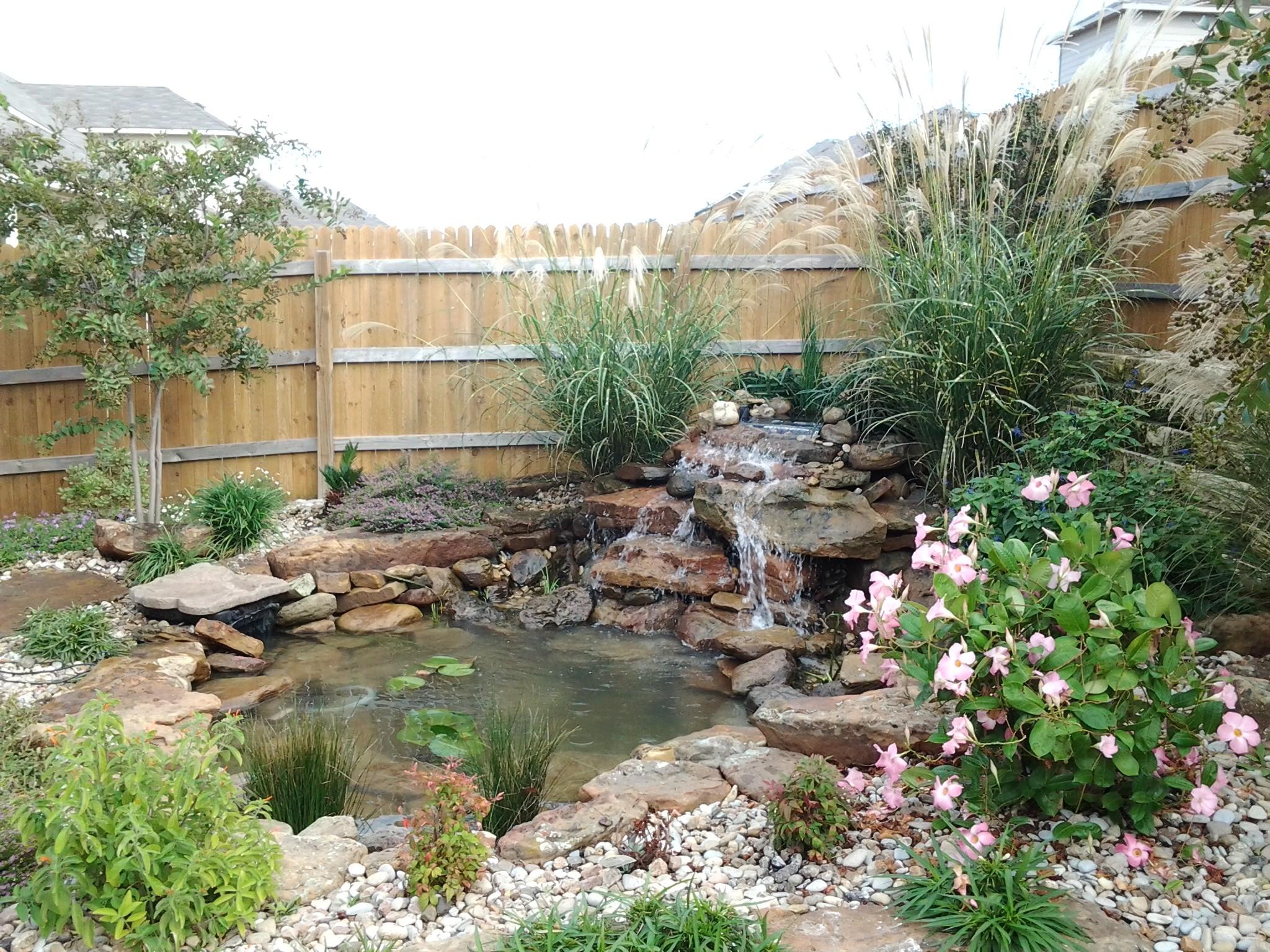 Koi Pond Wallpaper (56+ images) on Landscape Pond Design id=98687