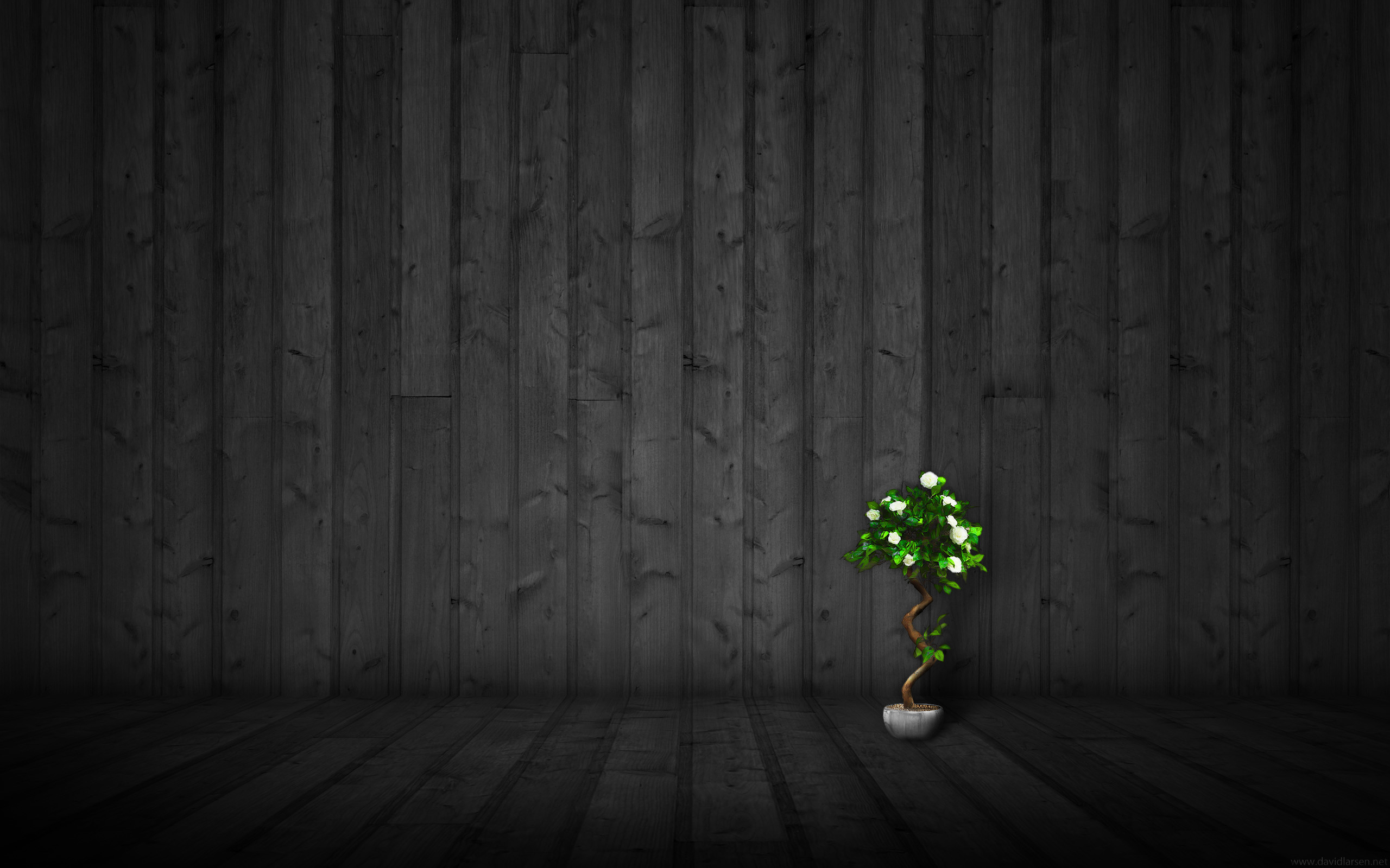 2560x1600 Theme Bin» Blog Archive » Dark Wood 2 HD Wallpaper