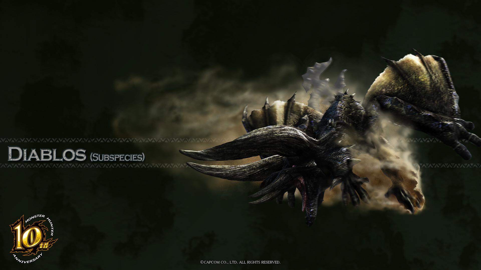 Monster Hunter Tri Wallpaper 67 Images