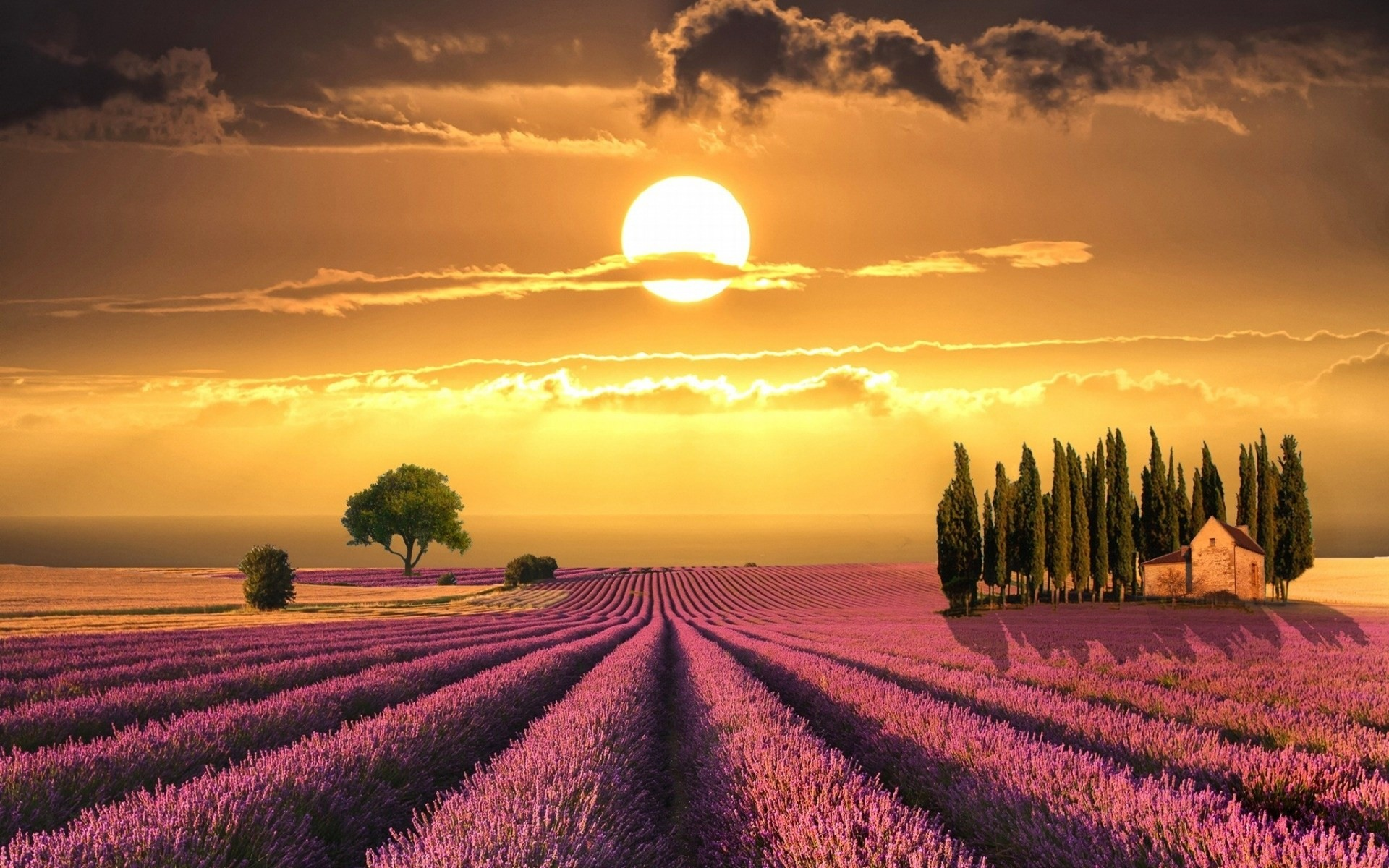1920x1200 sunset-in-tuscany-wallpaper-1
