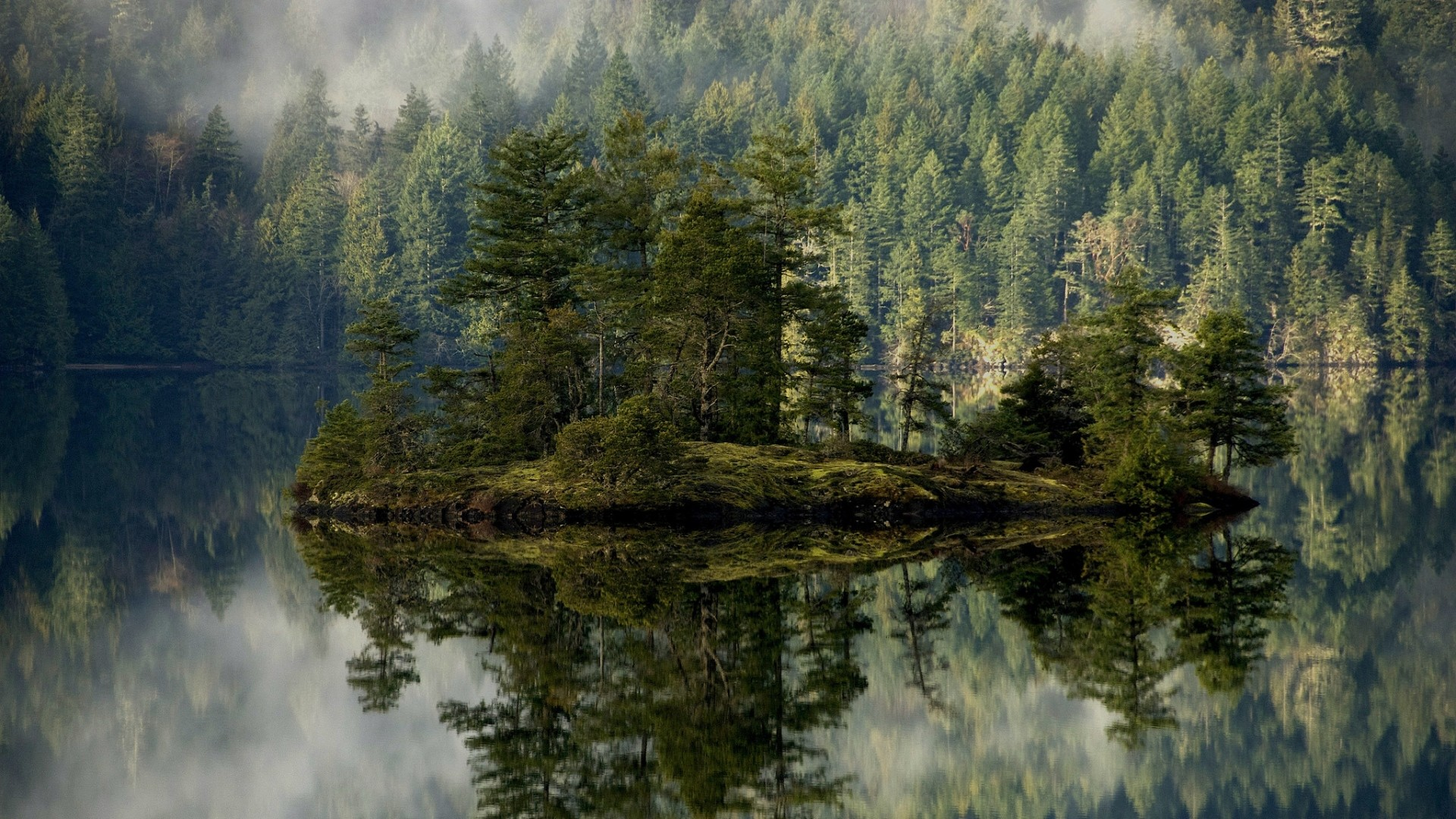 1920x1080 Preview wallpaper forest, lake, reflection, island, mist