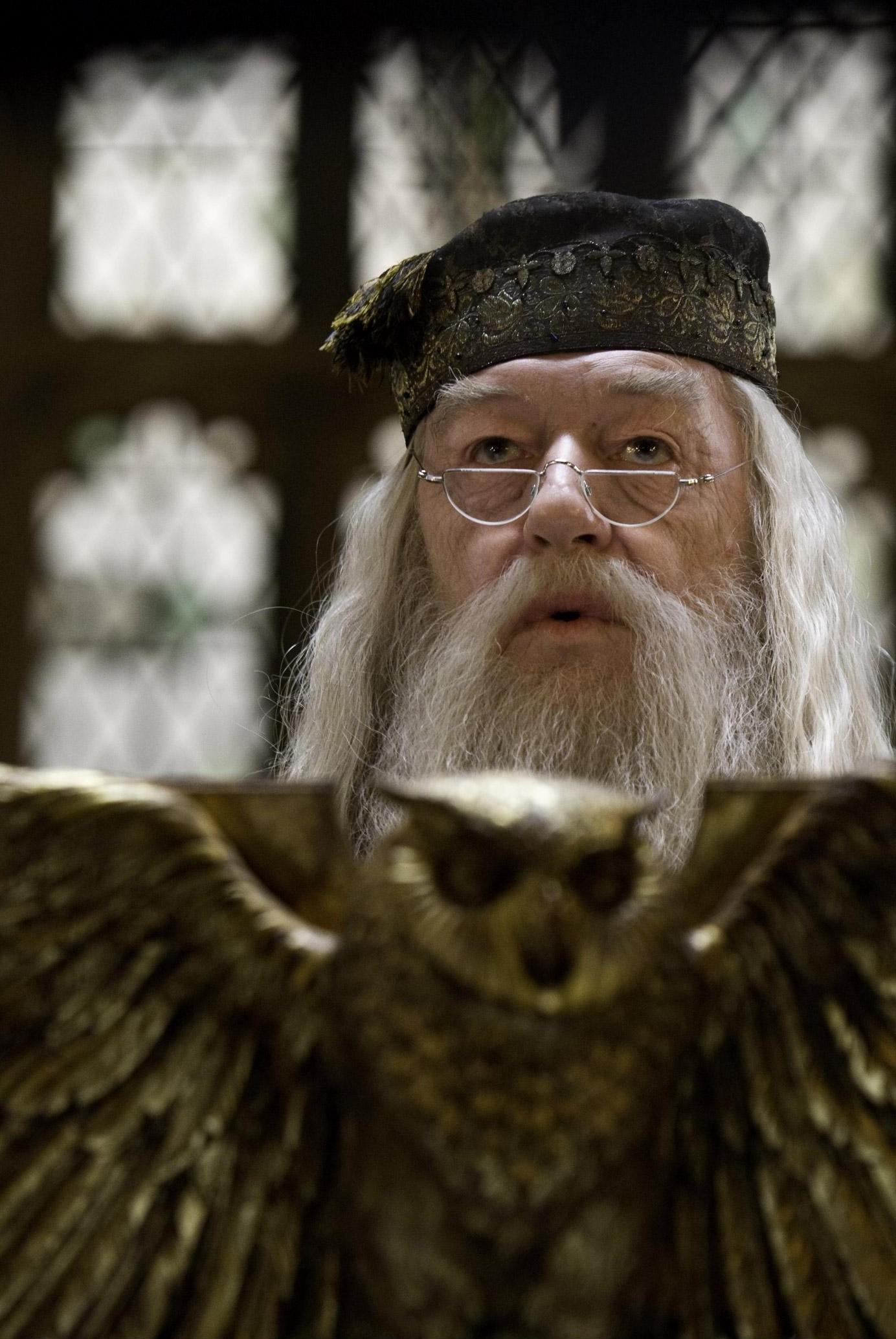 Albus Dumbledore Wallpaper Traffic Club