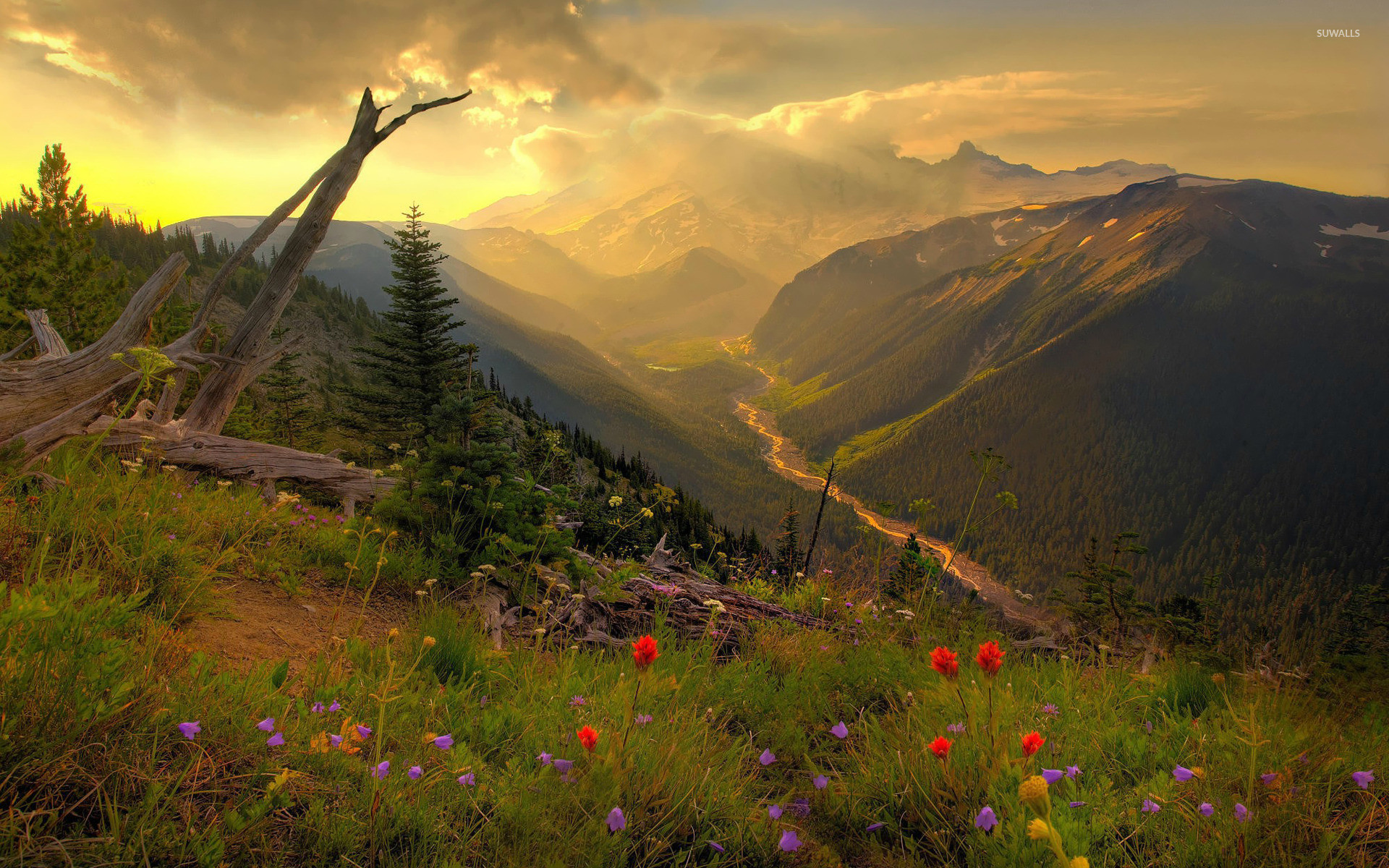 1920x1200 Mount Rainier National Park [2] wallpaper