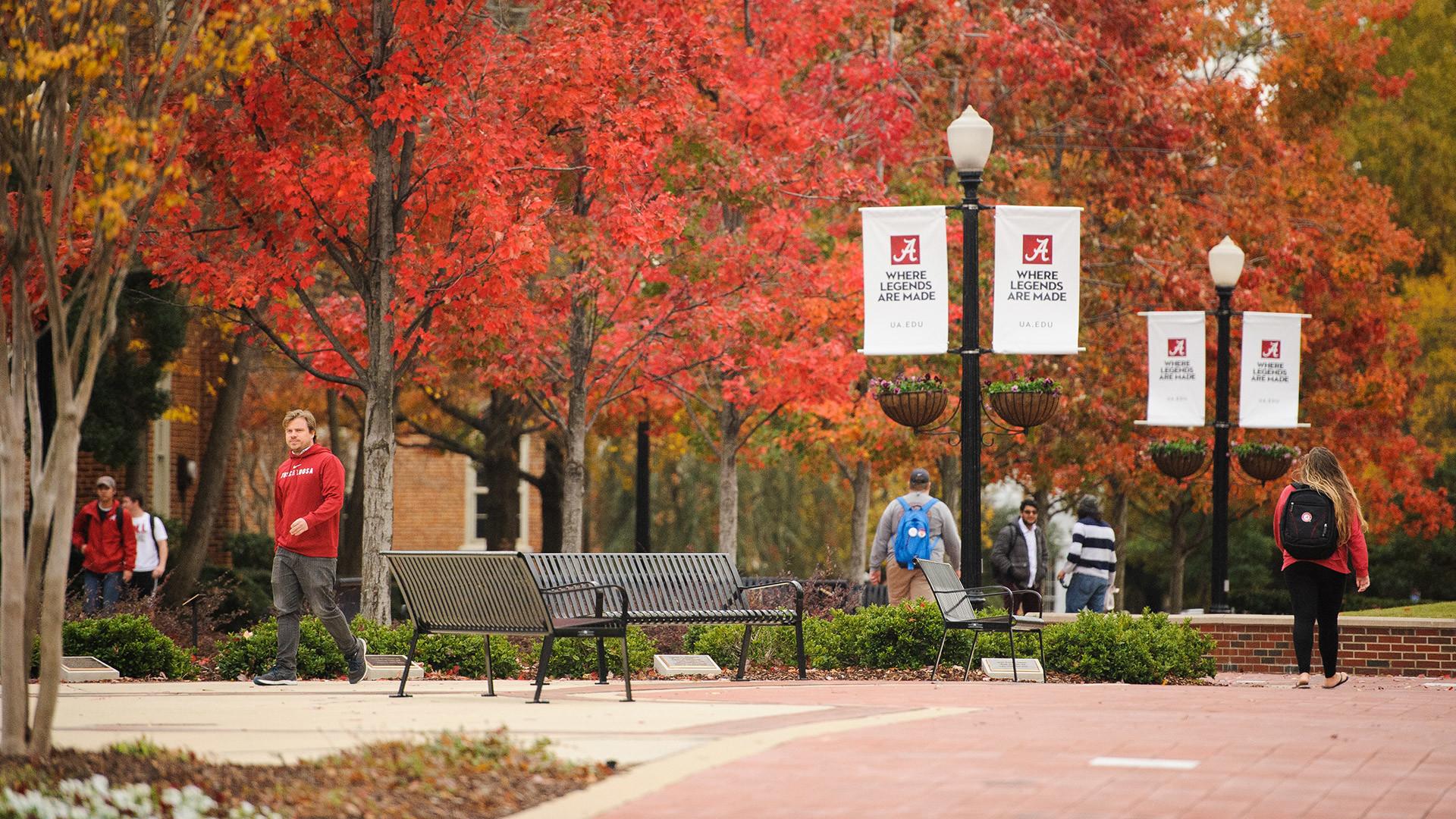 Alabama: University Of Alabama Wallpapers (55+ Images