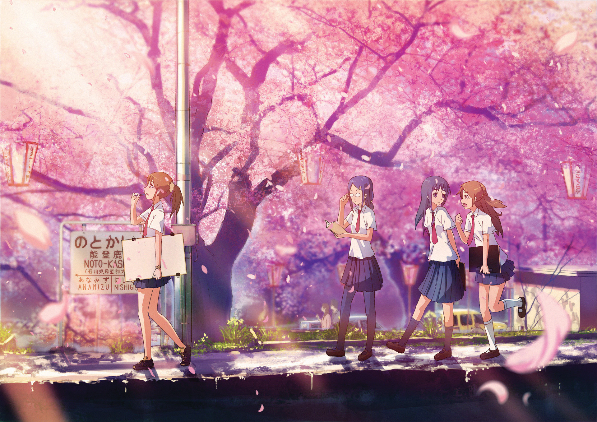 Anime Cherry Blossom Wallpaper 72 Images