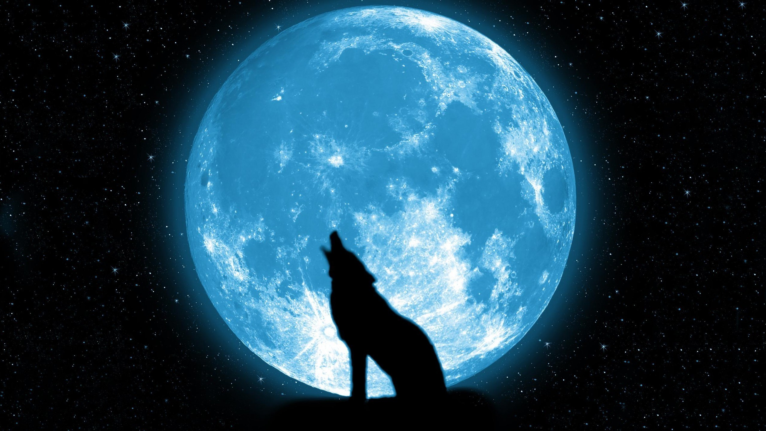 2560x1440  wolf howling on the moon Wallpapers HD