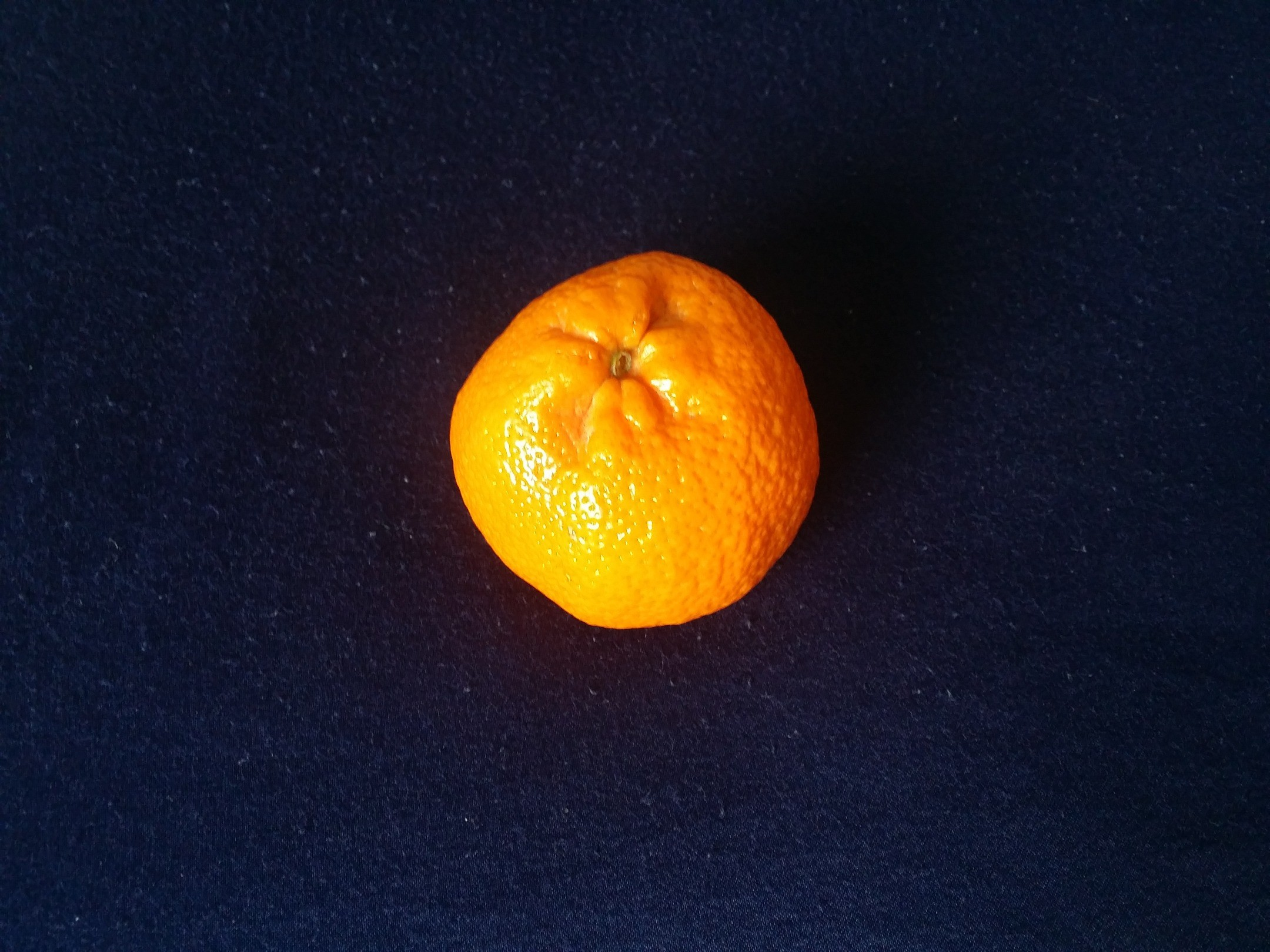 2160x1620 Africa, photo, free, Clementine, fruit, midnight blue background