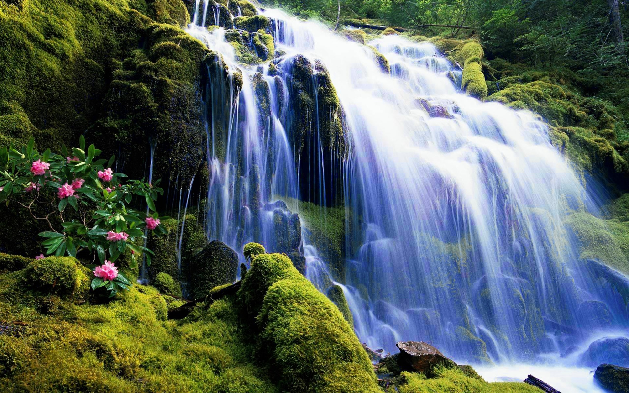 Animated Waterfall Wallpaper With Sound (46+ Images