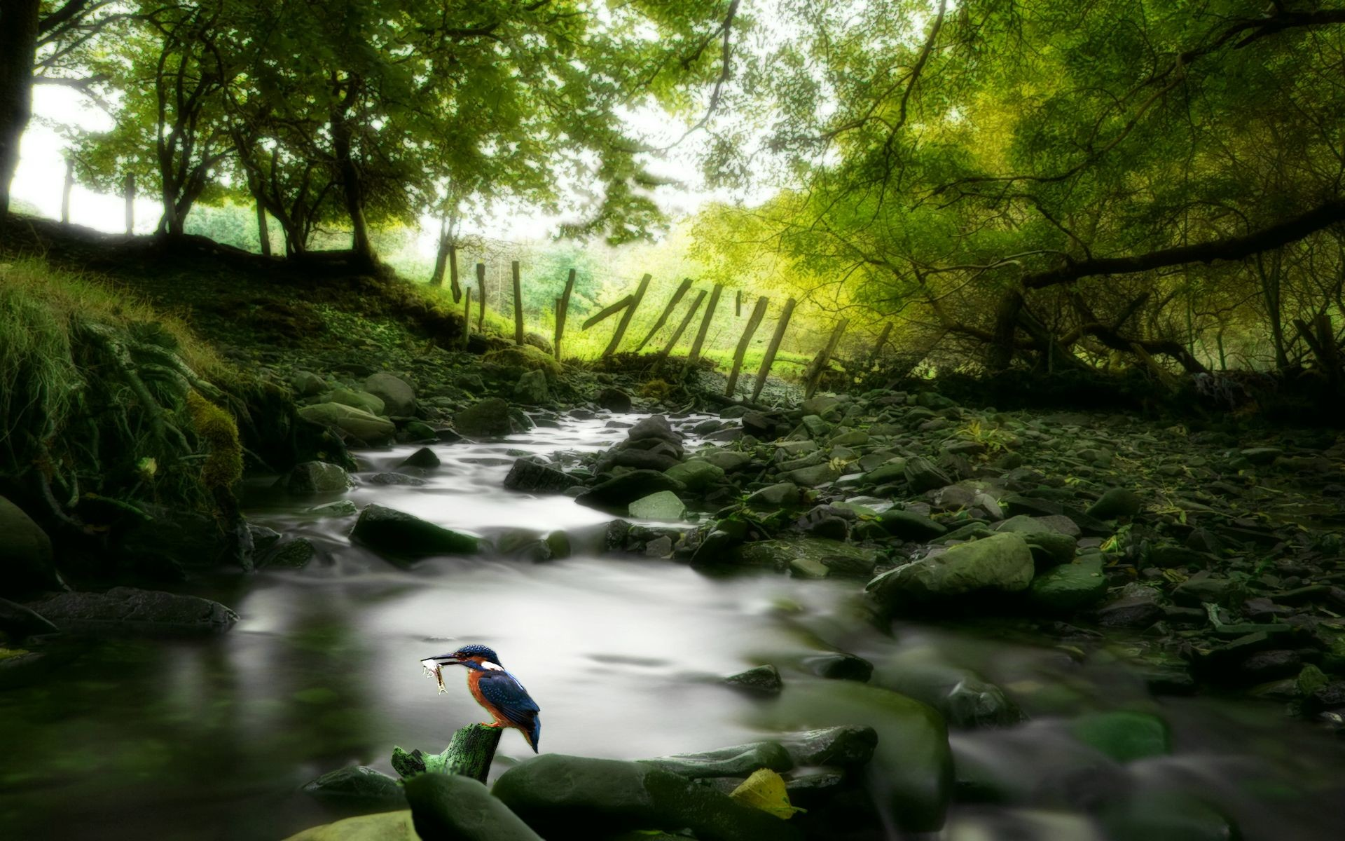 Awesome Nature Wallpapers 76 Images