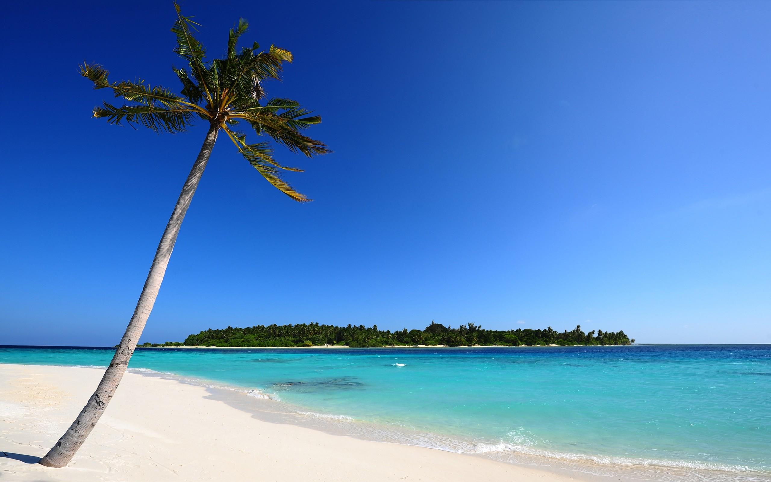 Hd Beach Desktop Backgrounds 61 Images