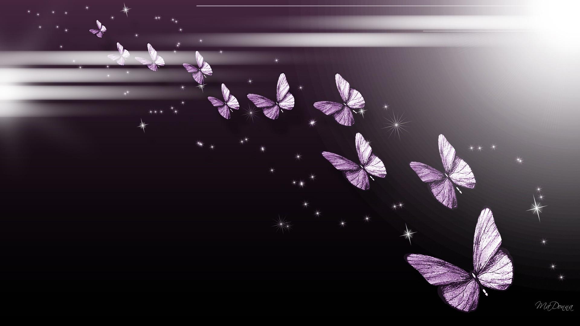 Purple butterfly wallpaper - photo#40