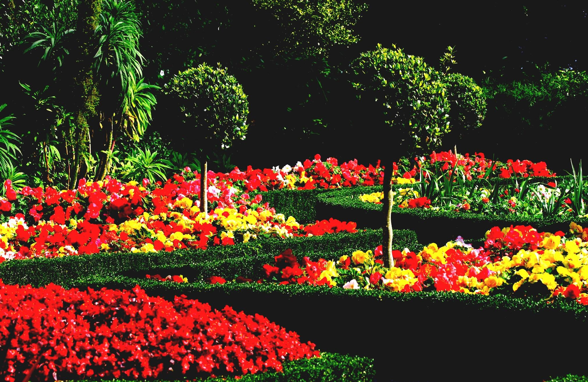 2022x1315 Beautiful Flower Garden Wallpapers Crazy Frankenstein Gardens Top Images  Colorful Pictures