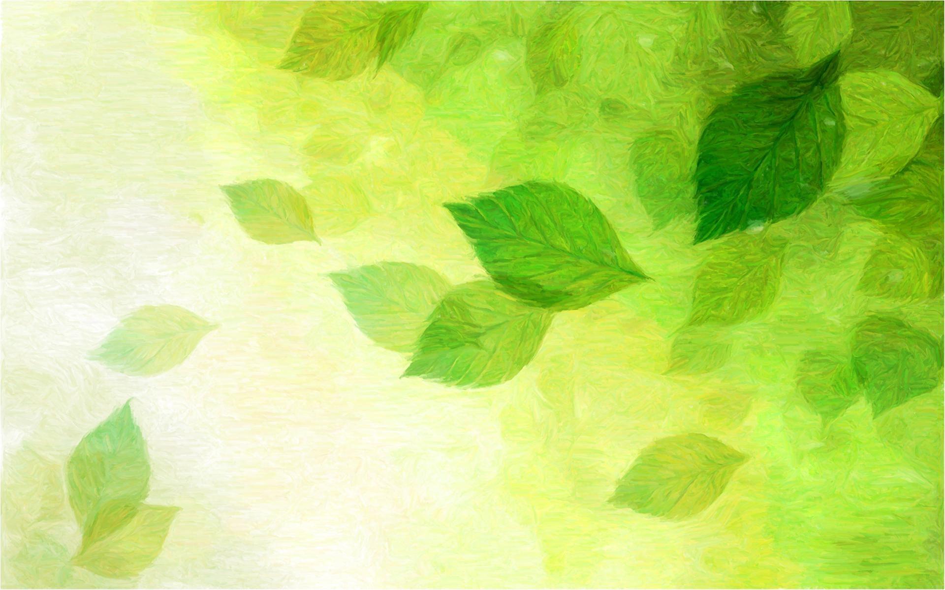 Pretty Green Wallpaper O