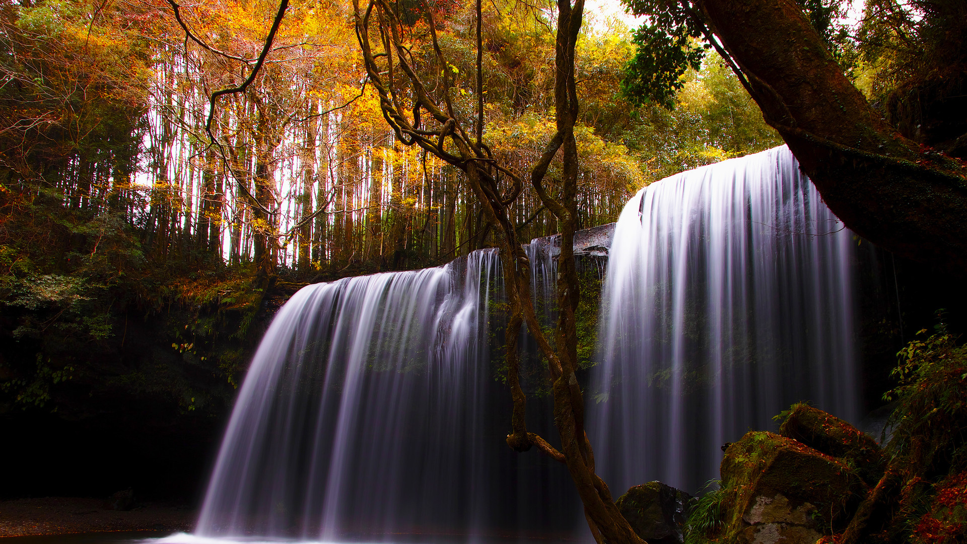 Nature Screensavers And Wallpapers (57+ Images