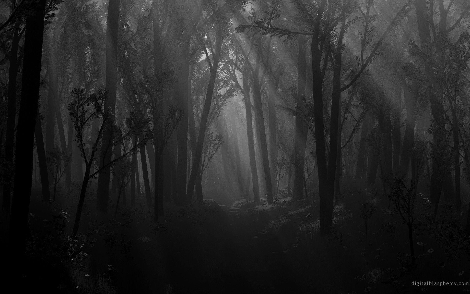 1920x1200 Dark Black and White Wallpaper | ... in the dark forest via garganta he