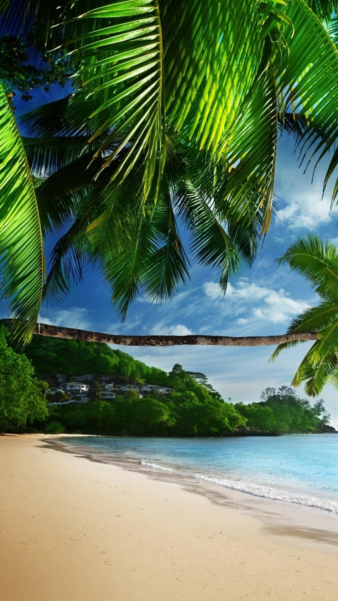 Tropical Wallpaper (65+ images)