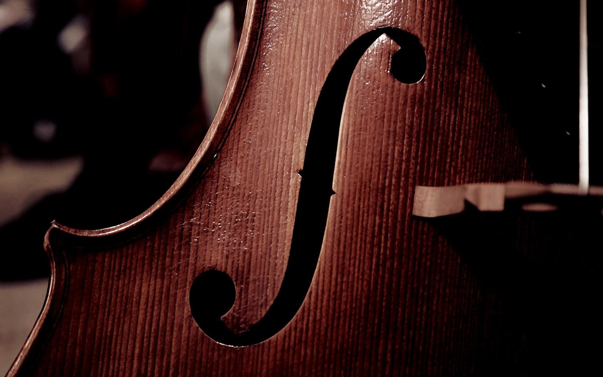 1920x1200 Wallpaperwiki Cello Background Free Download PIC WPC007355