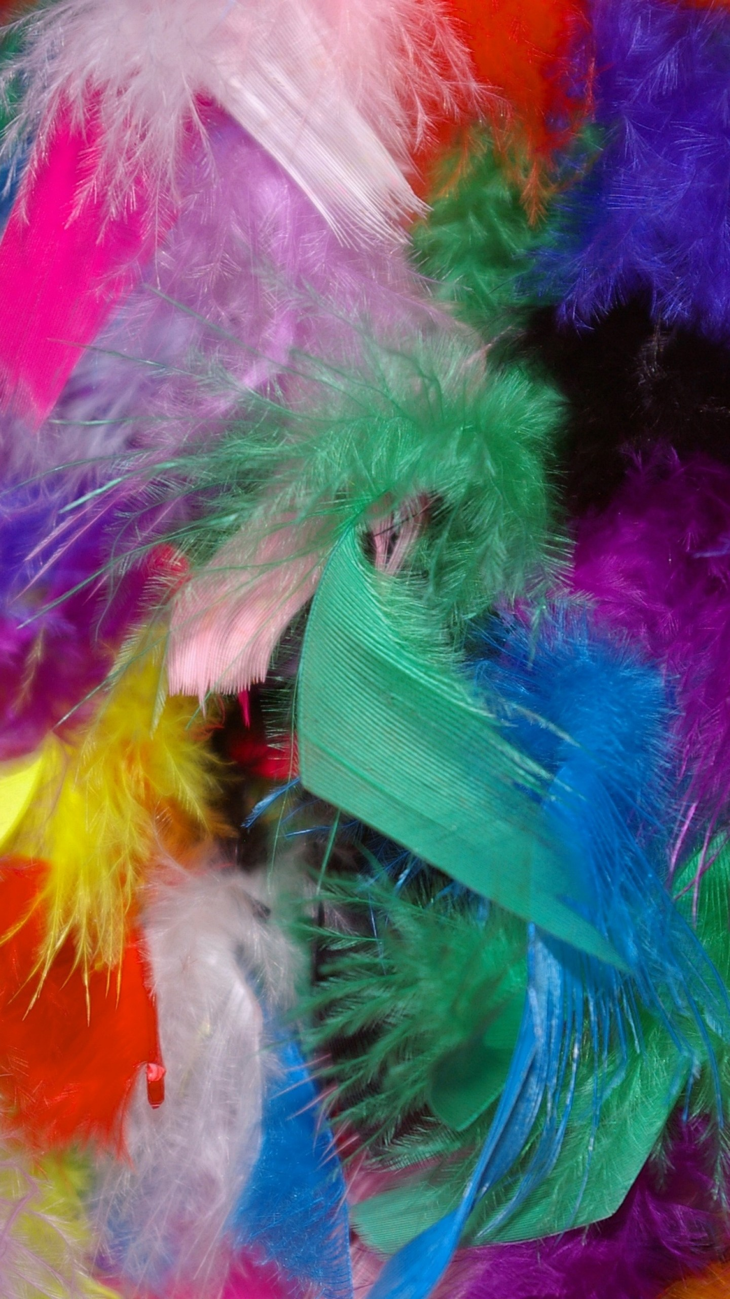 1440x2560  Wallpaper feathers, background, colorful