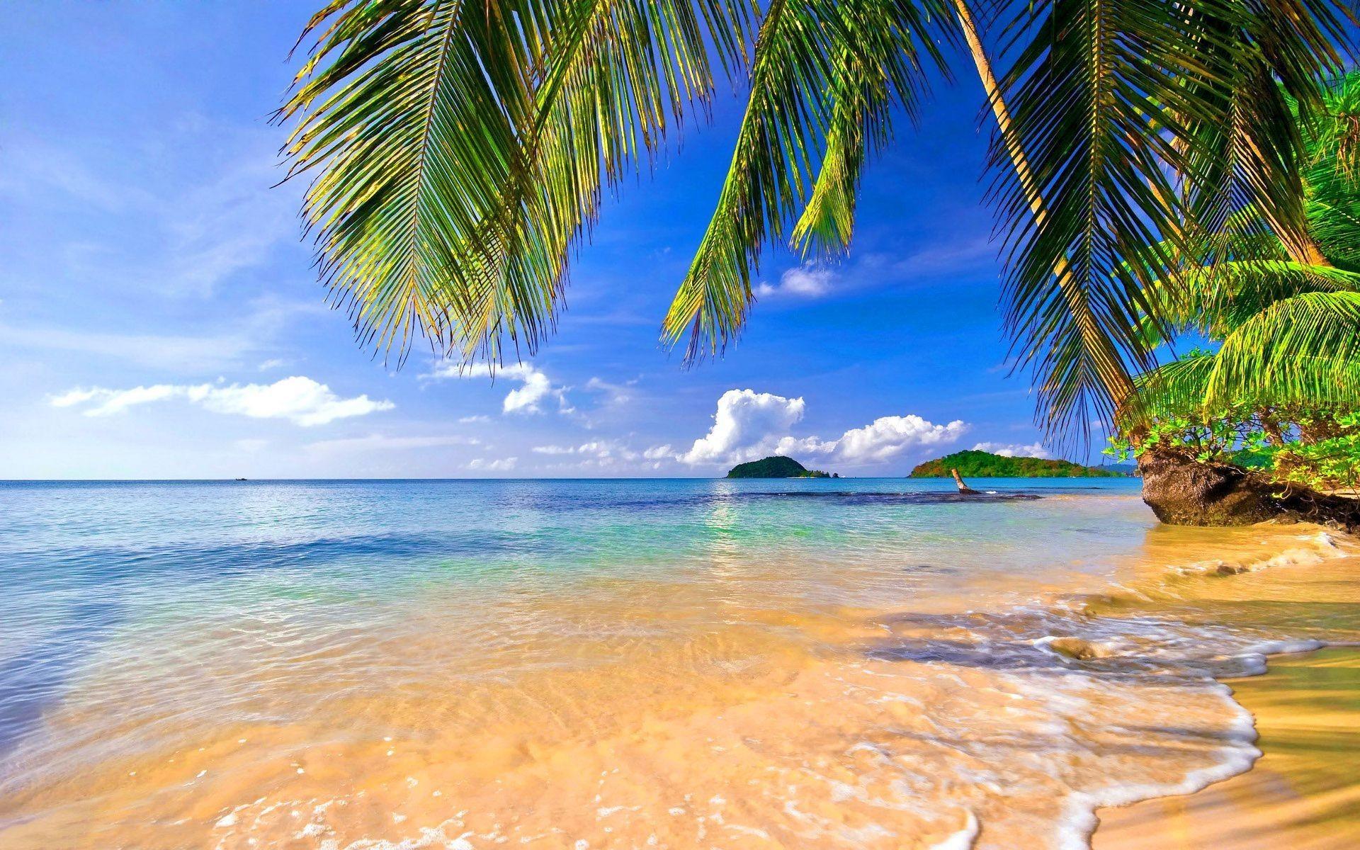 Hd Tropical Island Beach Paradise Wallpapers And Backgrounds: Tropical Beach HD Wallpaper (68+ Images