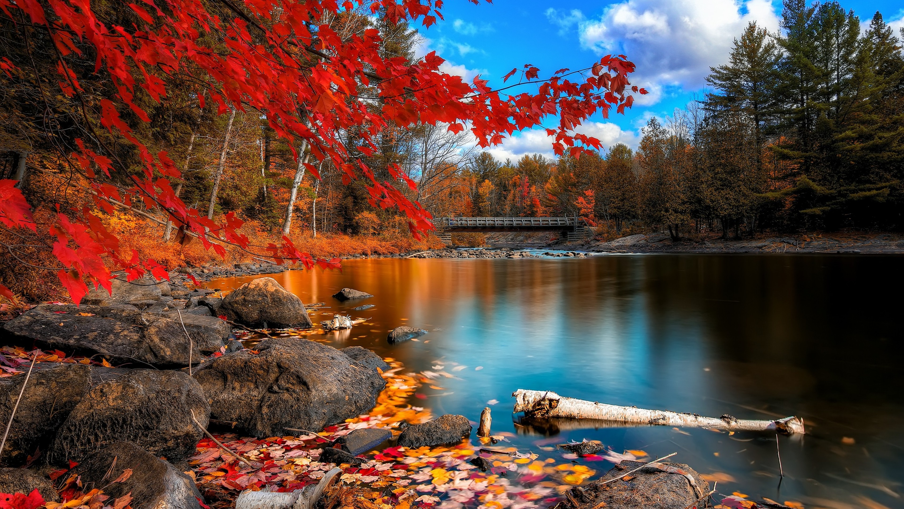 Fall Scenery Wallpaper 57 Images