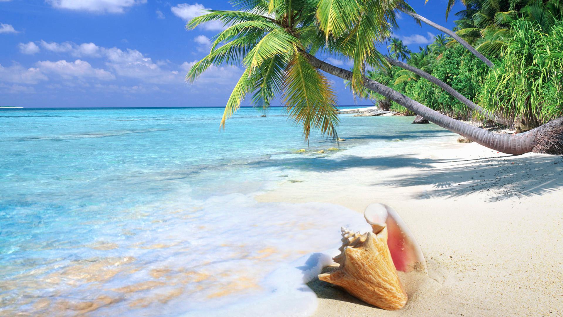 1920x1080 Beach 4K Ultra HD Wallpaper Download Aleshia Foley