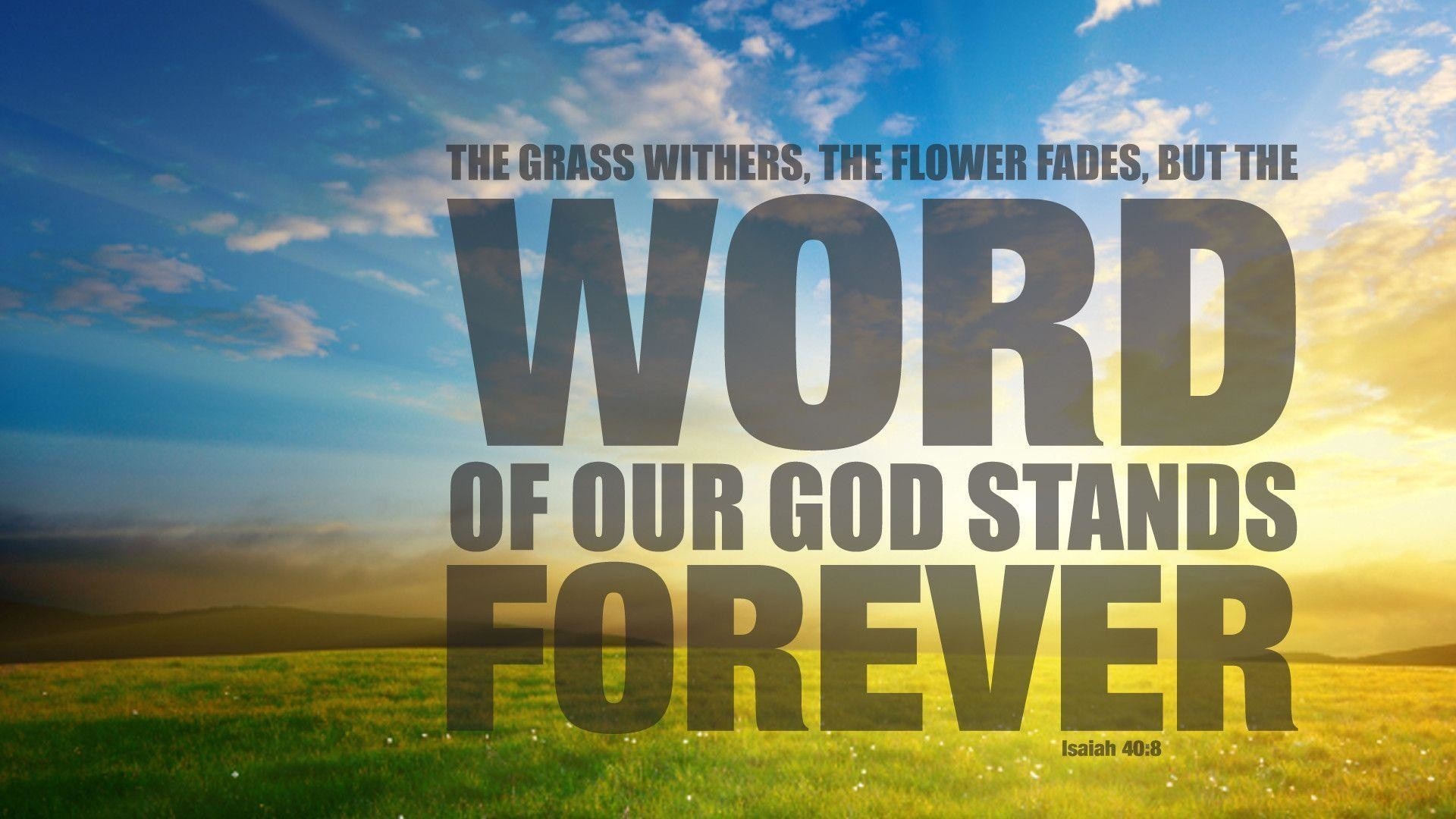 Bible Verse Wallpapers (51+ images)